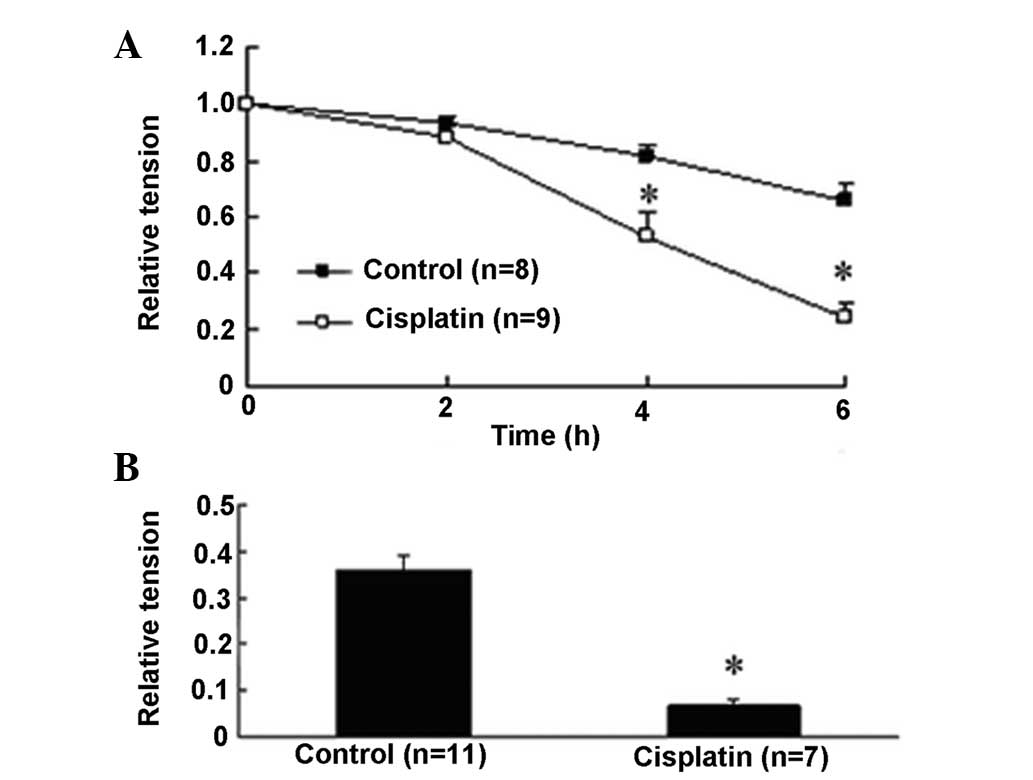 Effects Of Cisplatin On The Contractile Function Of Thoracic Aorta