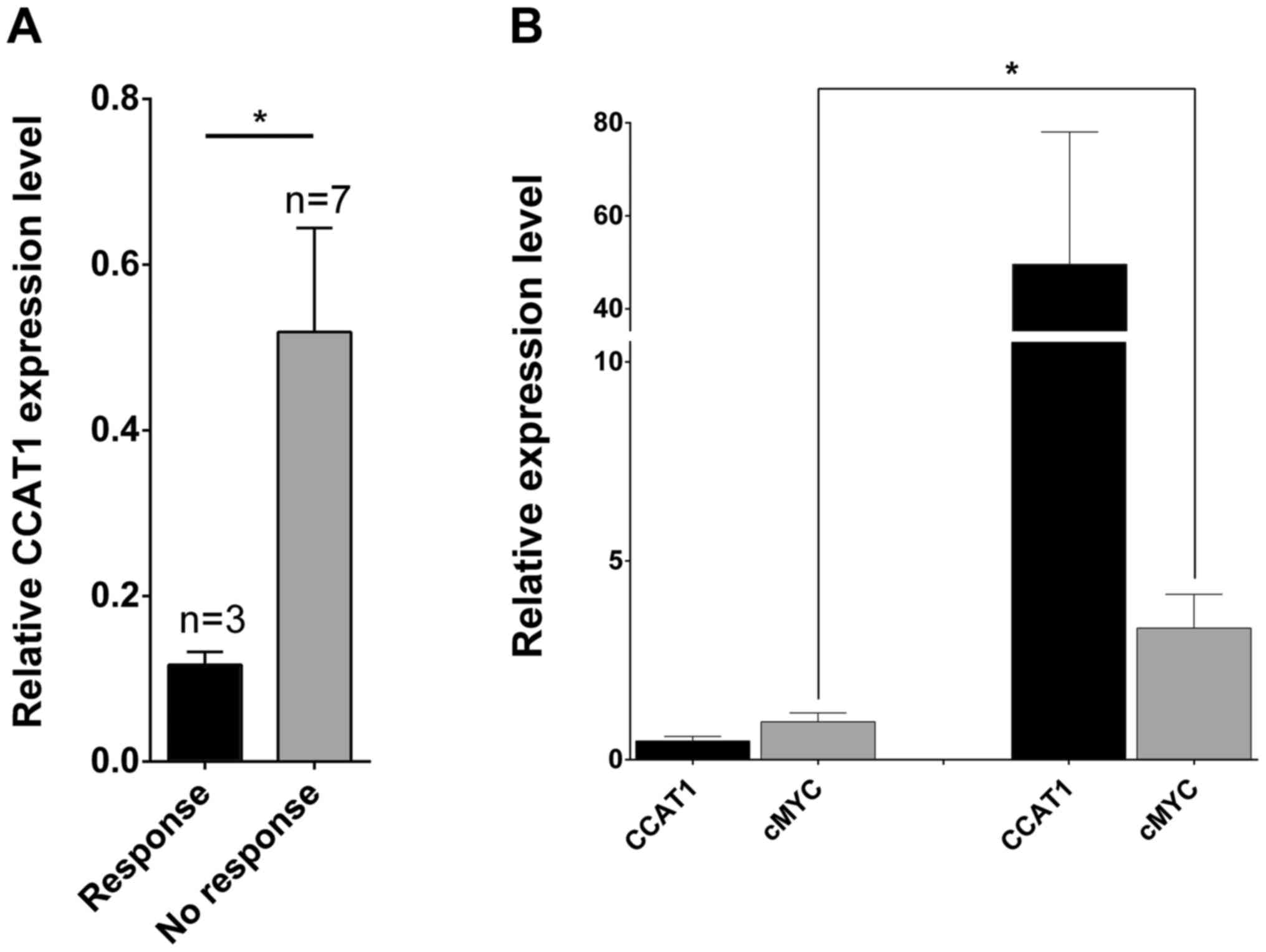 c-Myc and CCAT1 are concomitantly overexpressed in oral squamous cell  carcinomas and are associated with clinical outcome. (A) Oral cancer  patients ...