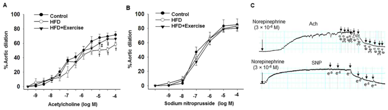 Exercise improves high fat diet-impaired vascular function