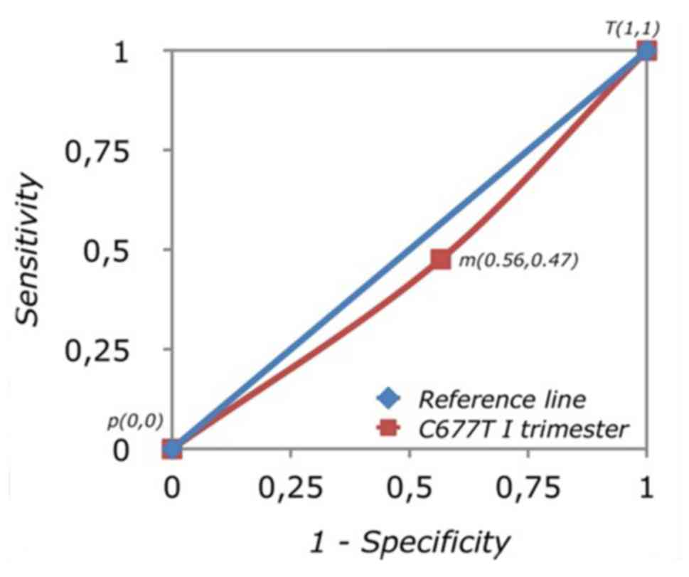 Methylenetetrahydrofolate reductase gene C677T and A1298C