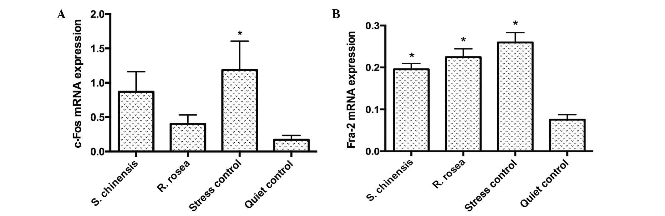 Schisandra chinensis and Rhodiola rosea exert an anti-stress