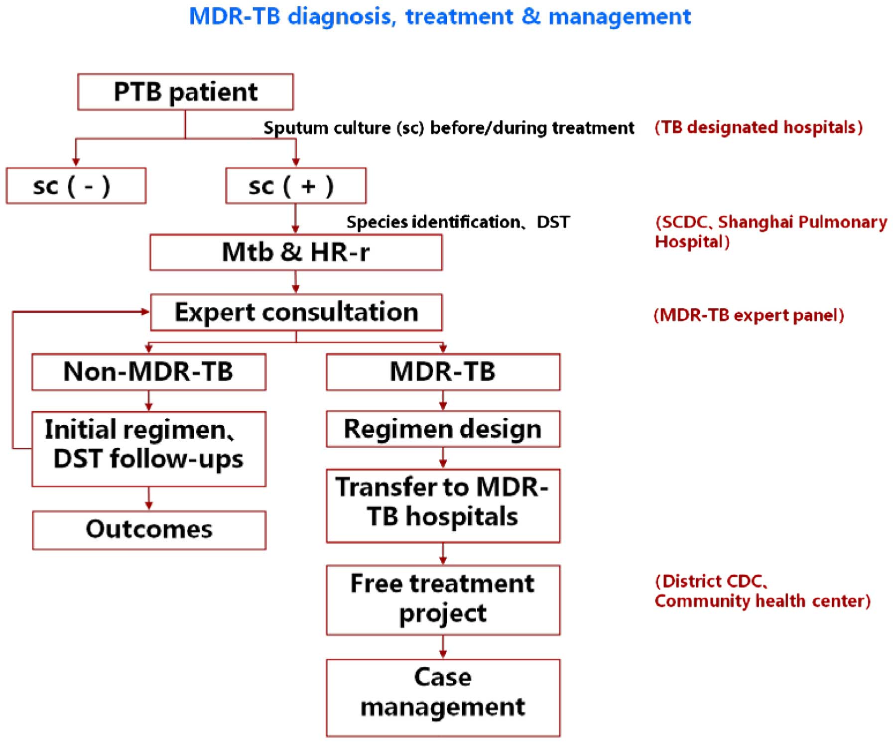 Efficacy and effect of free treatment on multidrugresistant flow chart of diagnosis and treatment mdr tb multidrug resistant tuberculosis dst drug susceptibility testing nvjuhfo Image collections