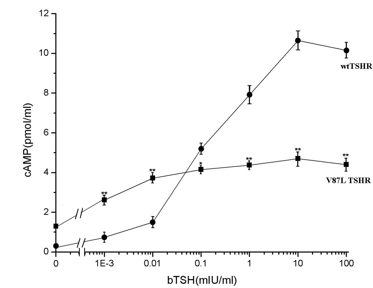 Identification and functional characterization of a novel