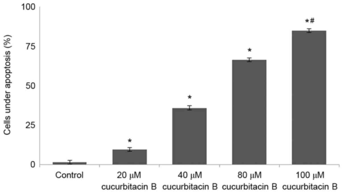 Cucurbitacin B inhibits cell proliferation and induces