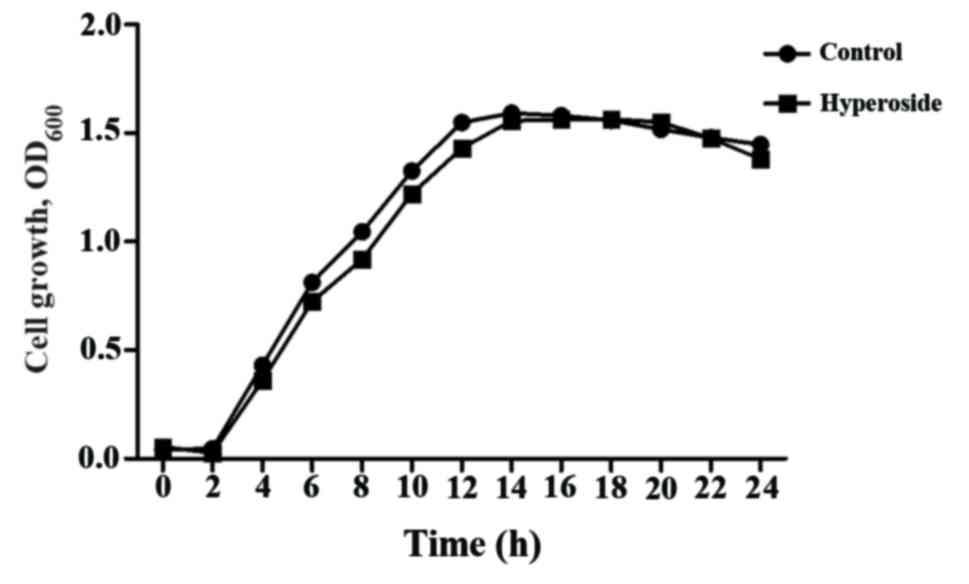 Hyperoside inhibits biofilm formation of Pseudomonas aeruginosa