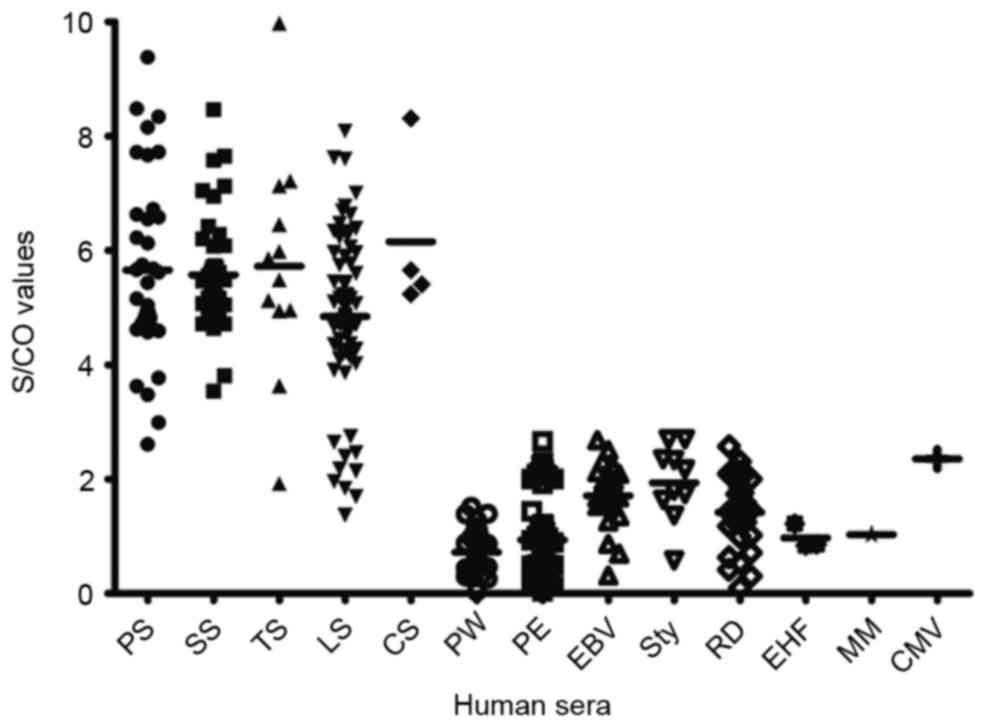 Serological evaluation of antigen Tp0693 for diagnosis of