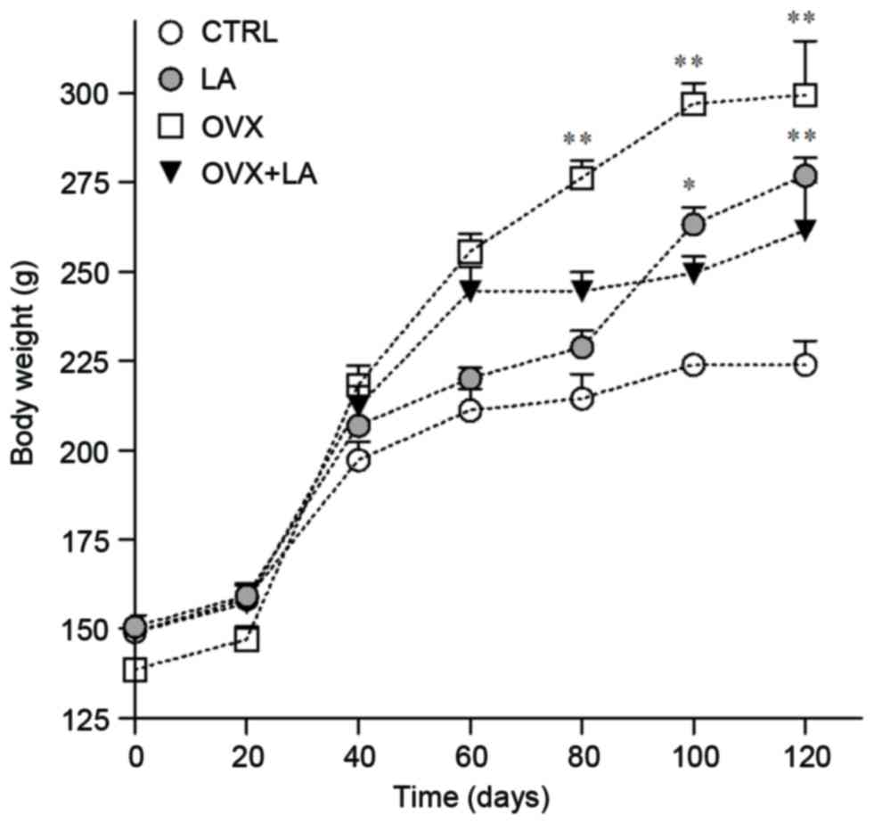 Changes in body composition and mRNA expression of ghrelin