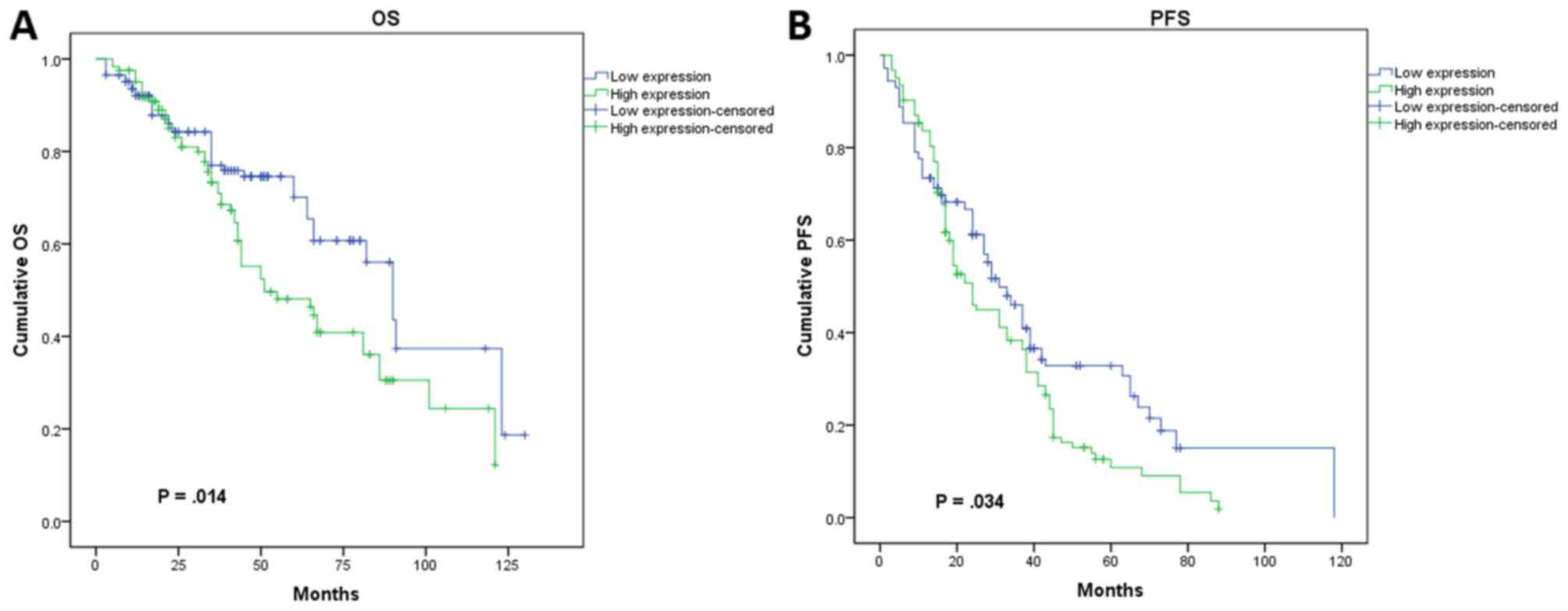 Expression And Prognostic Value Of Clic1 In Epithelial Ovarian Cancer