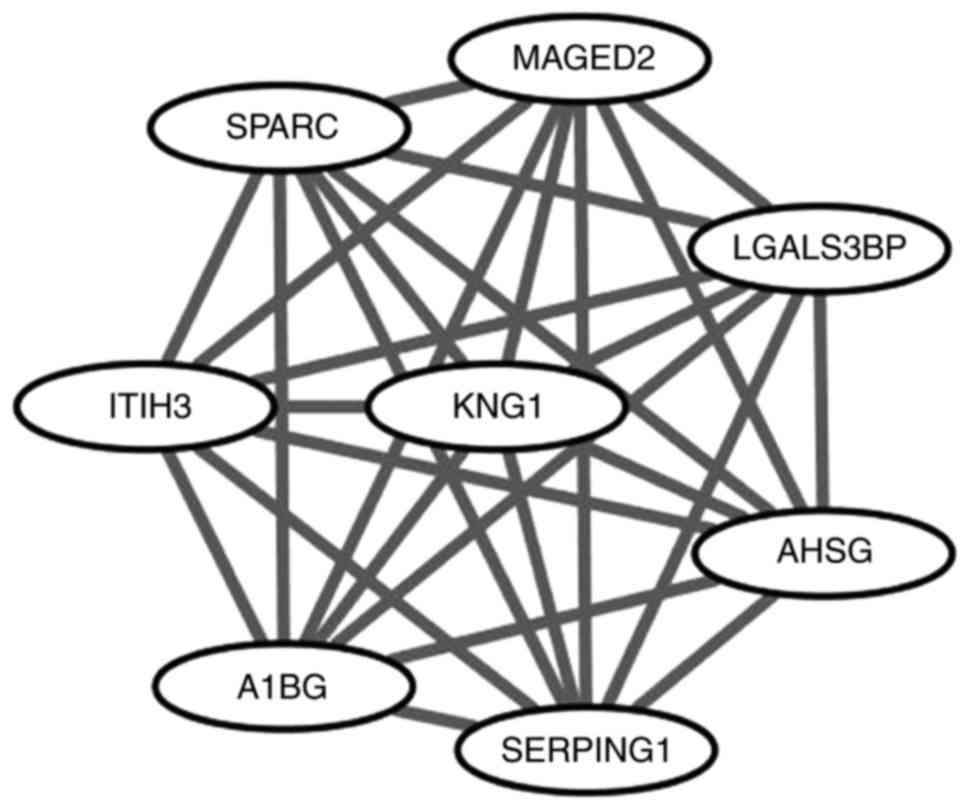 Identification Of Key Pathways And Biomarkers In Sorafenibresistant