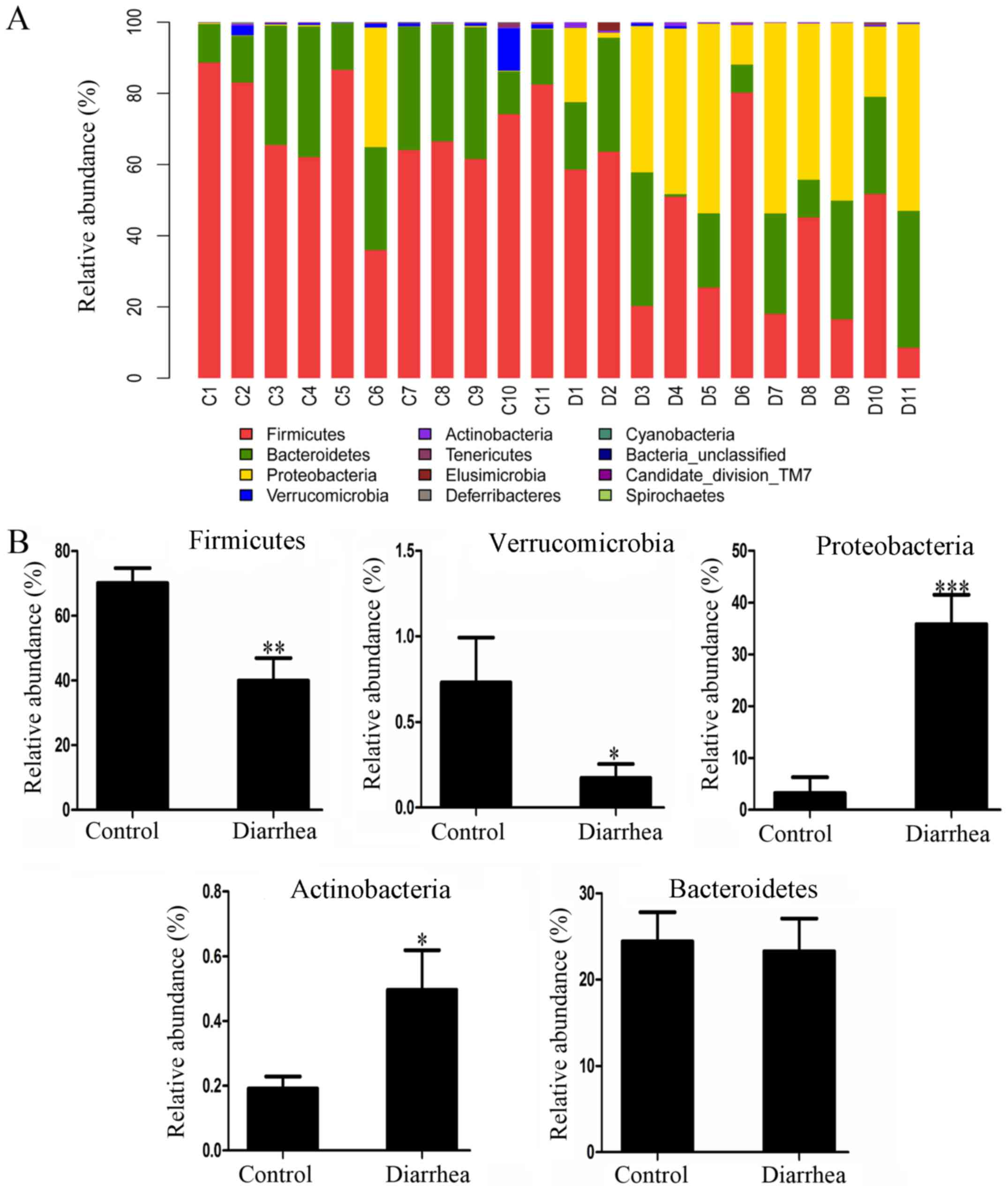 Escherichia coli O101‑induced diarrhea develops gut