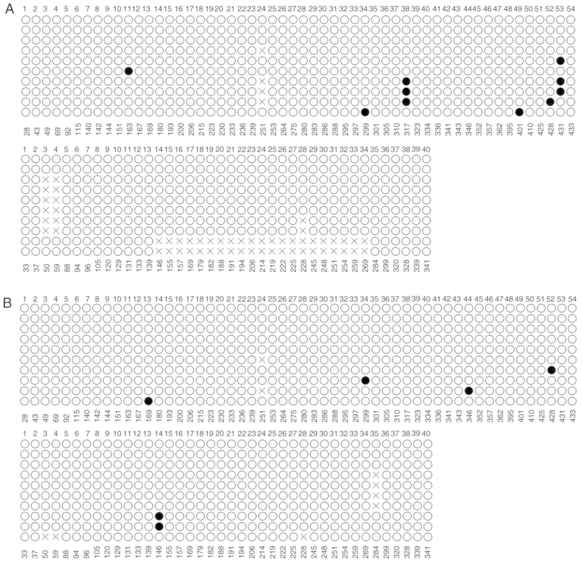 Analysis of promoter methylation and epigenetic regulation