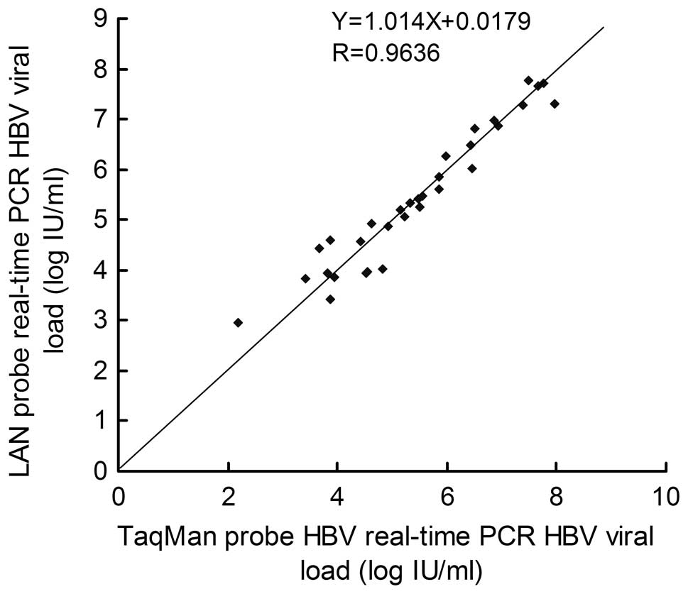 LNA real-time PCR probe quantification of hepatitis B virus DNA