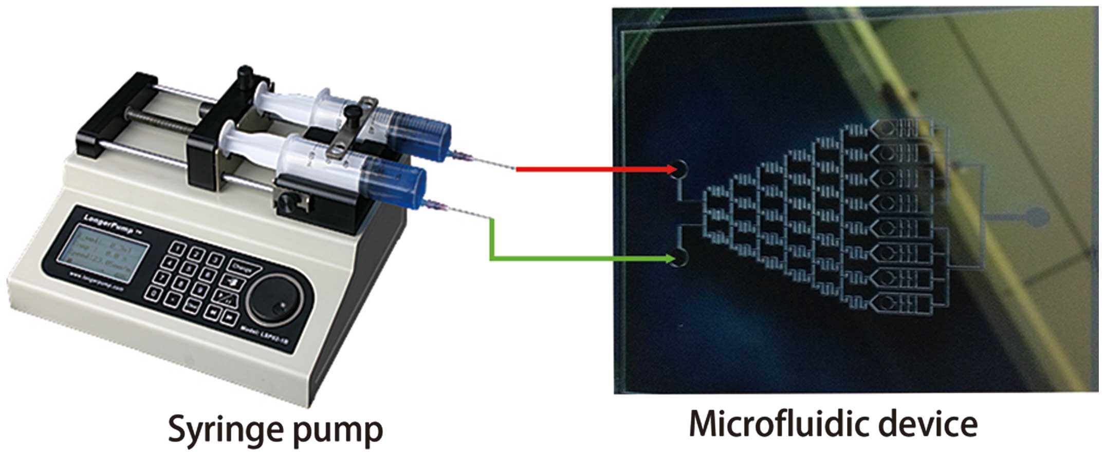 An Integrated Microfluidic Device For Screening The