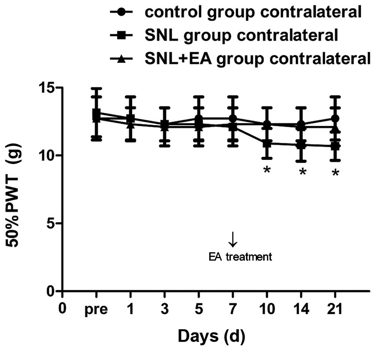 Analgesic mechanism of electroacupuncture in a rat L5 spinal nerve ...