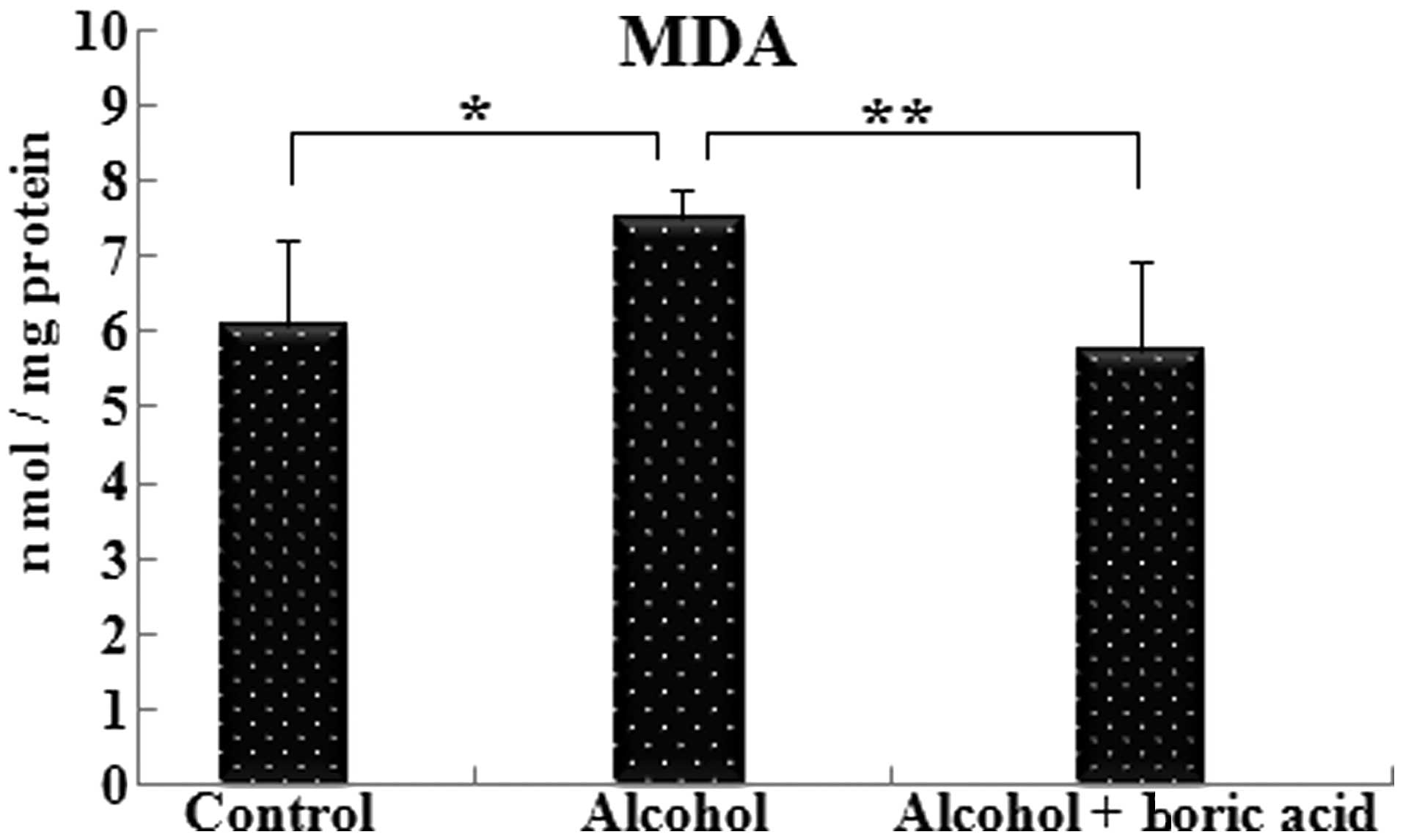 Effect of boric acid on oxidative stress in rats with fetal