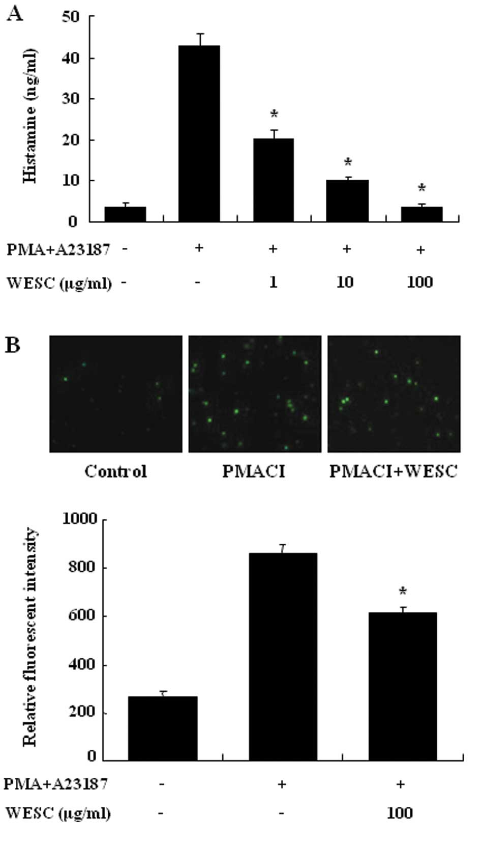 Sparassis crispa suppresses mast cell-mediated allergic inflammation