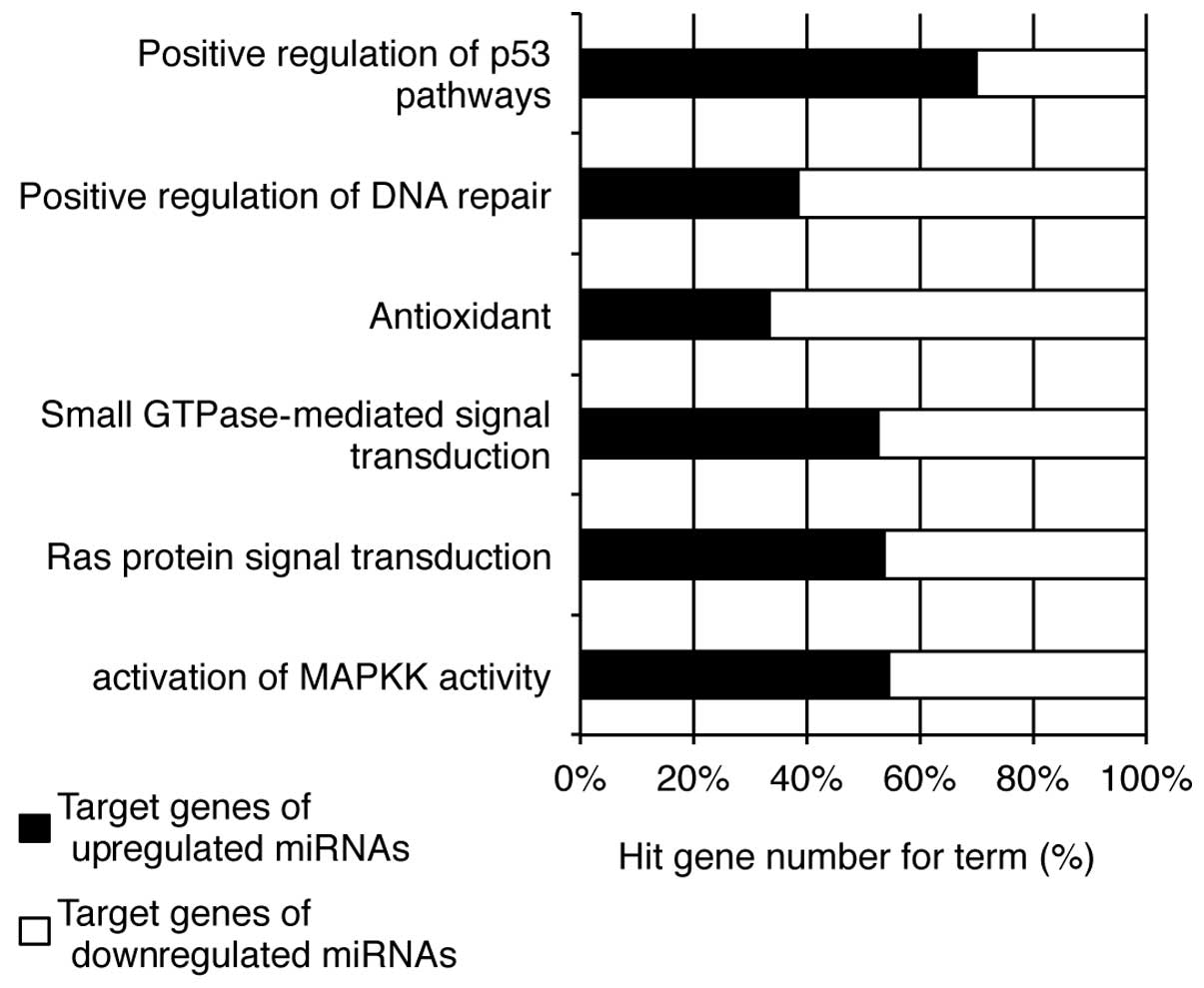 an examination of the positive effects of gene altering What is the human genome project  some of the positive benefits include:  examination of the ethical, legal, and social implications of genome research is.