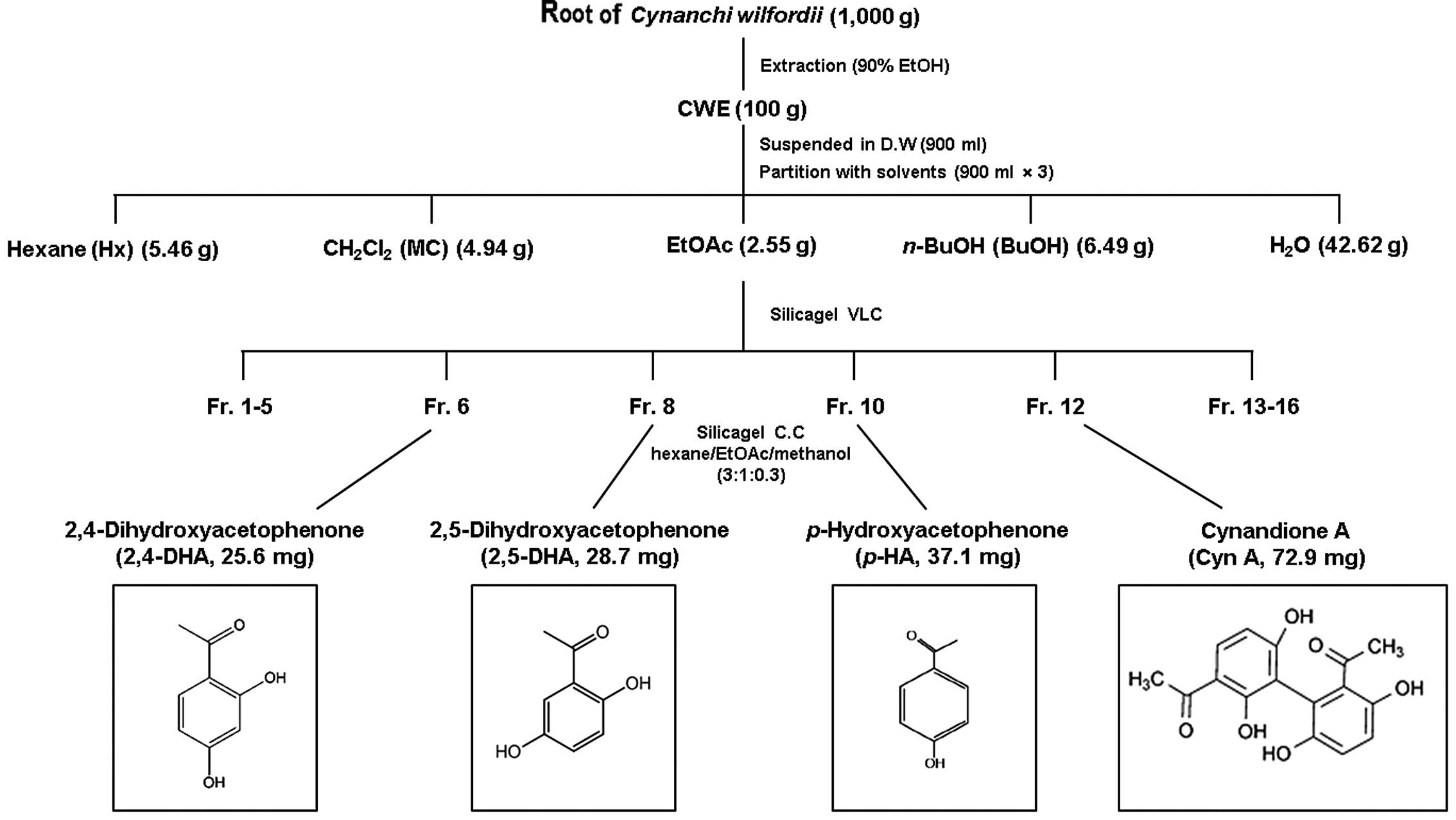 Figure 6 Extraction and fractionation of root extract Cynanchum wilfordii schematic diagram CH2Cl2 dichloromethane soluble fraction EtOAc