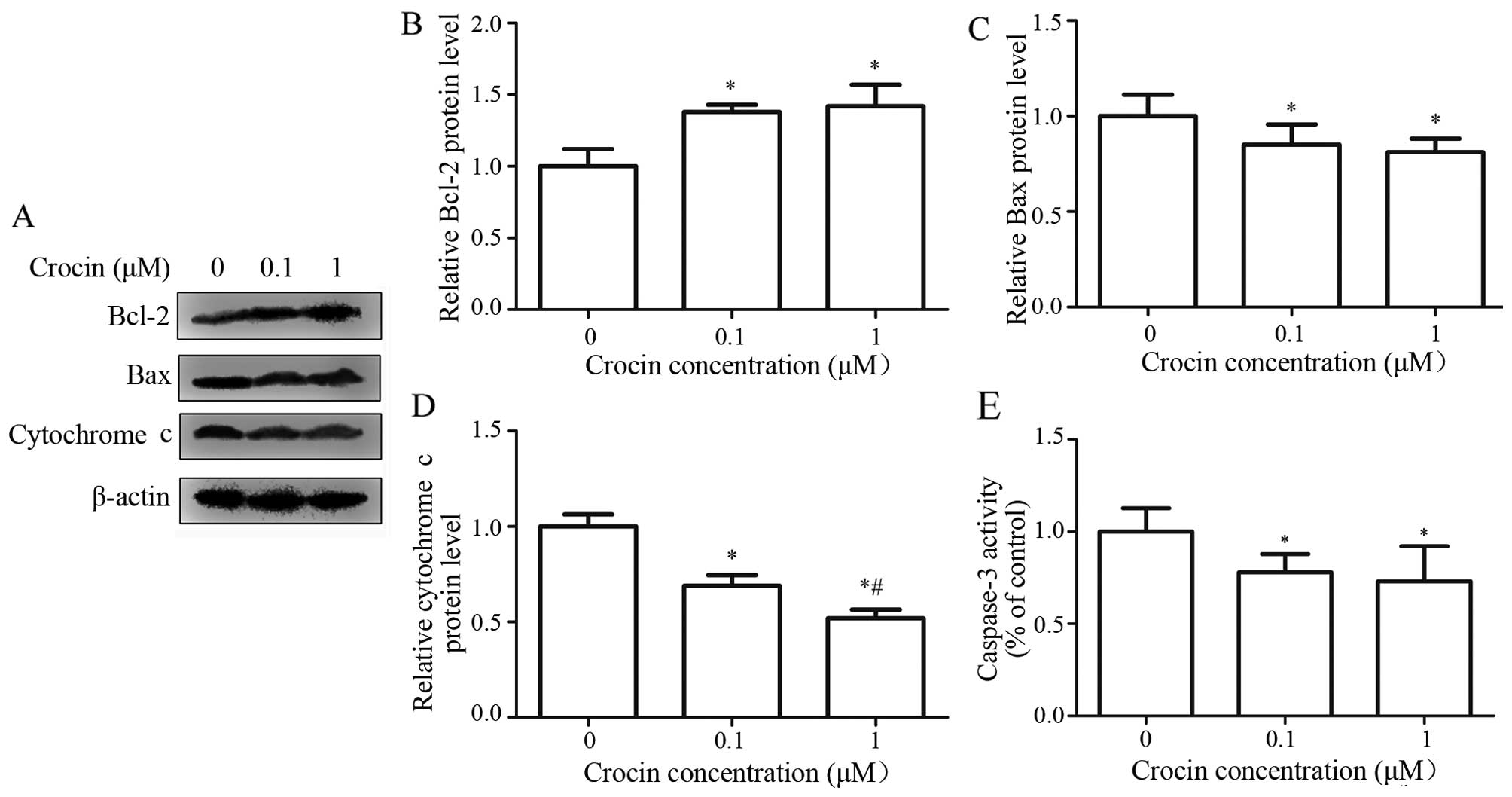 effect of catalase concentration naomi nikeeta Josephine davina putribiology b the effect of substrate concentration on the activity of enzymes 1 introduction o proble.