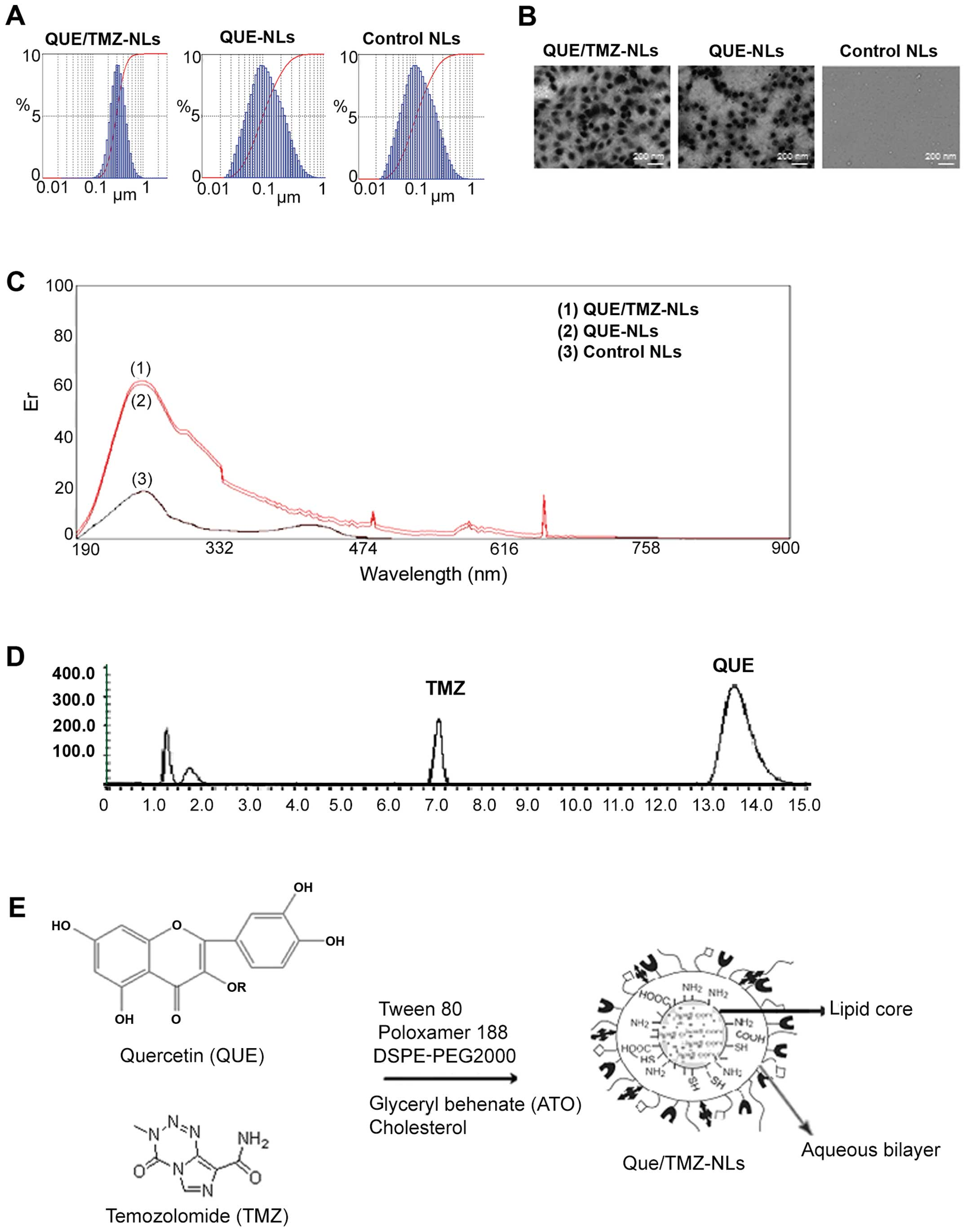 pegylated nanoliposomes remote loaded with the antioxidant