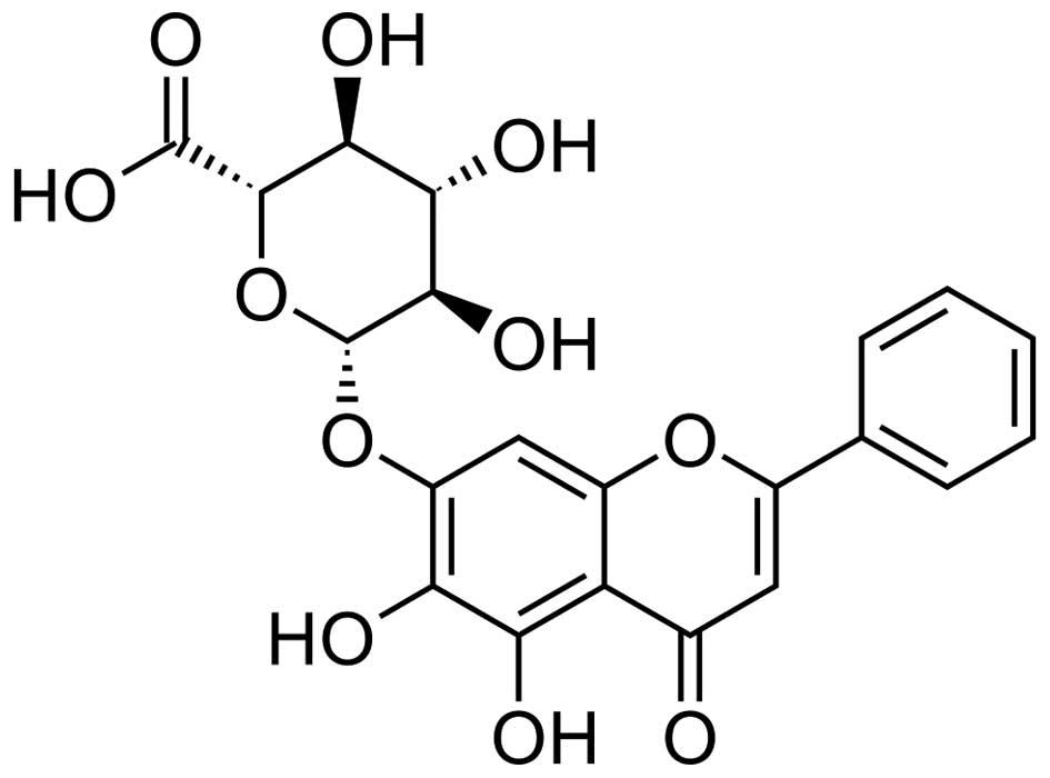 Baicalin Exerts Protective Effects Against Lipopolysaccharide
