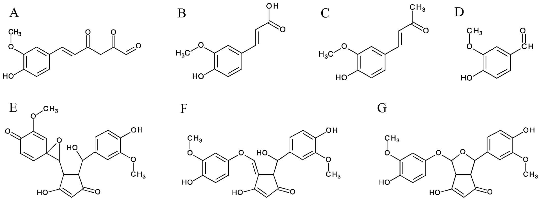 Determining whether curcumin degradation/condensation is