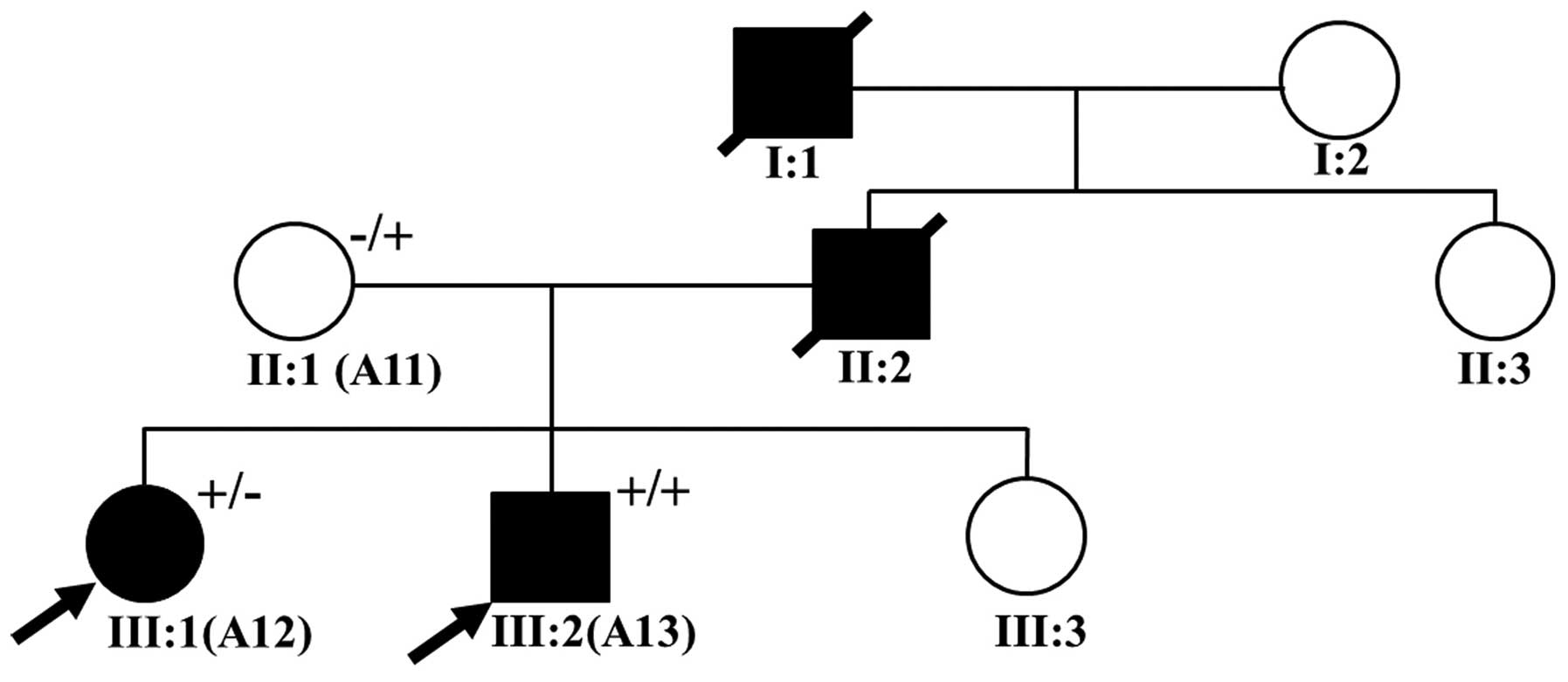 Identification Of Novel Mutations Including A Double Mutation In