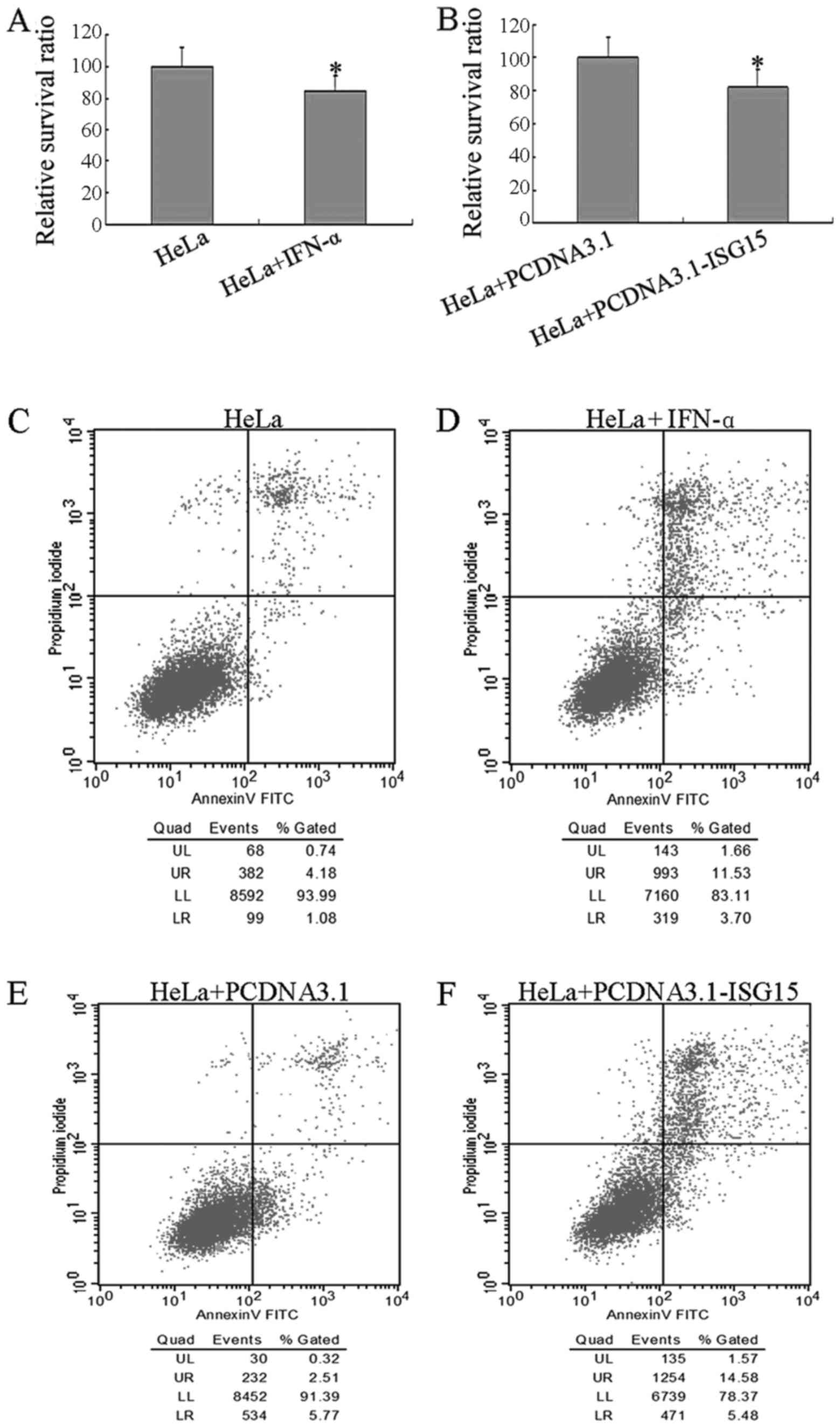 ISG15 inhibits cancer cell growth and promotes apoptosis