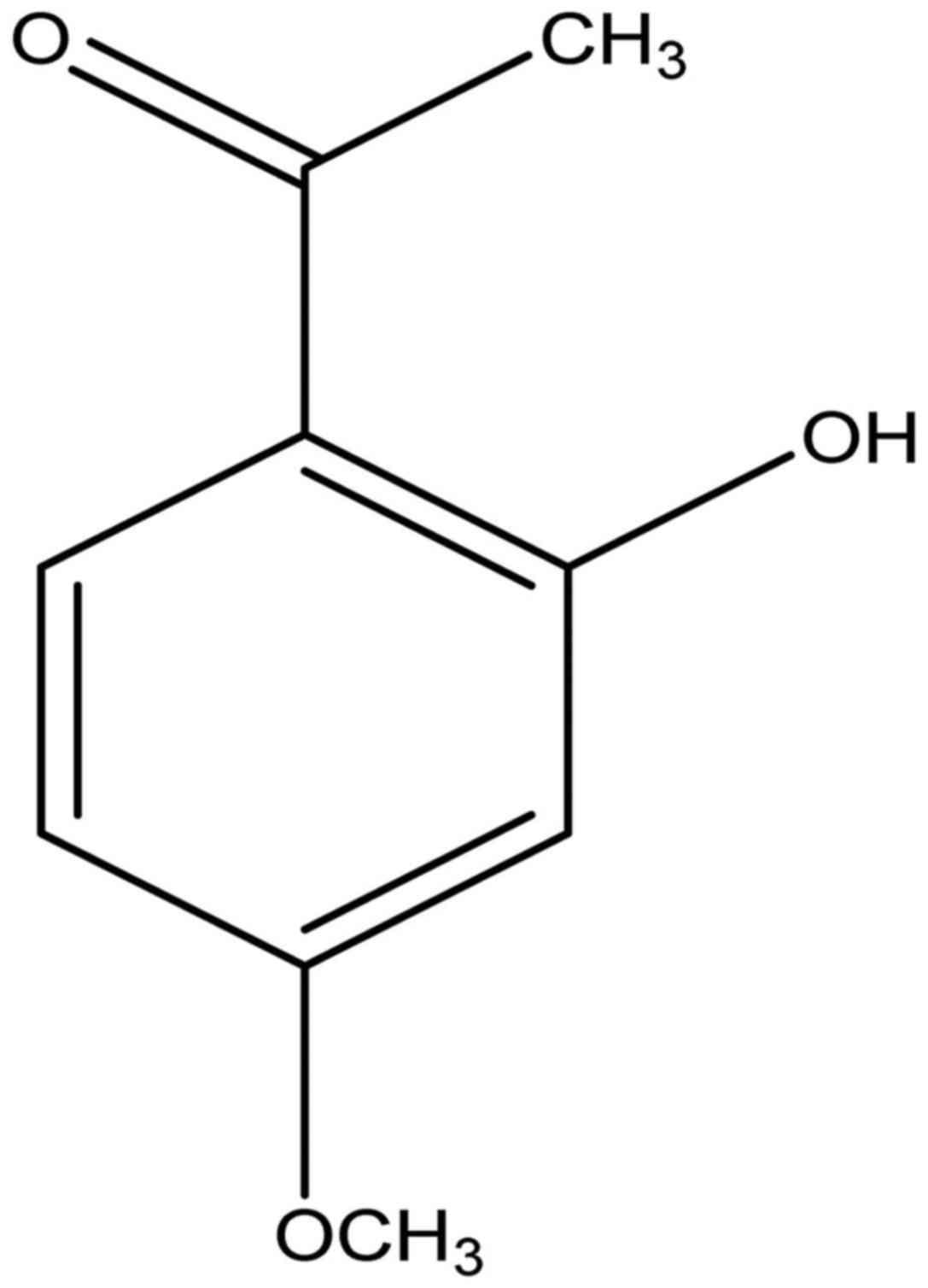 paeonol ameliorates imiquimod