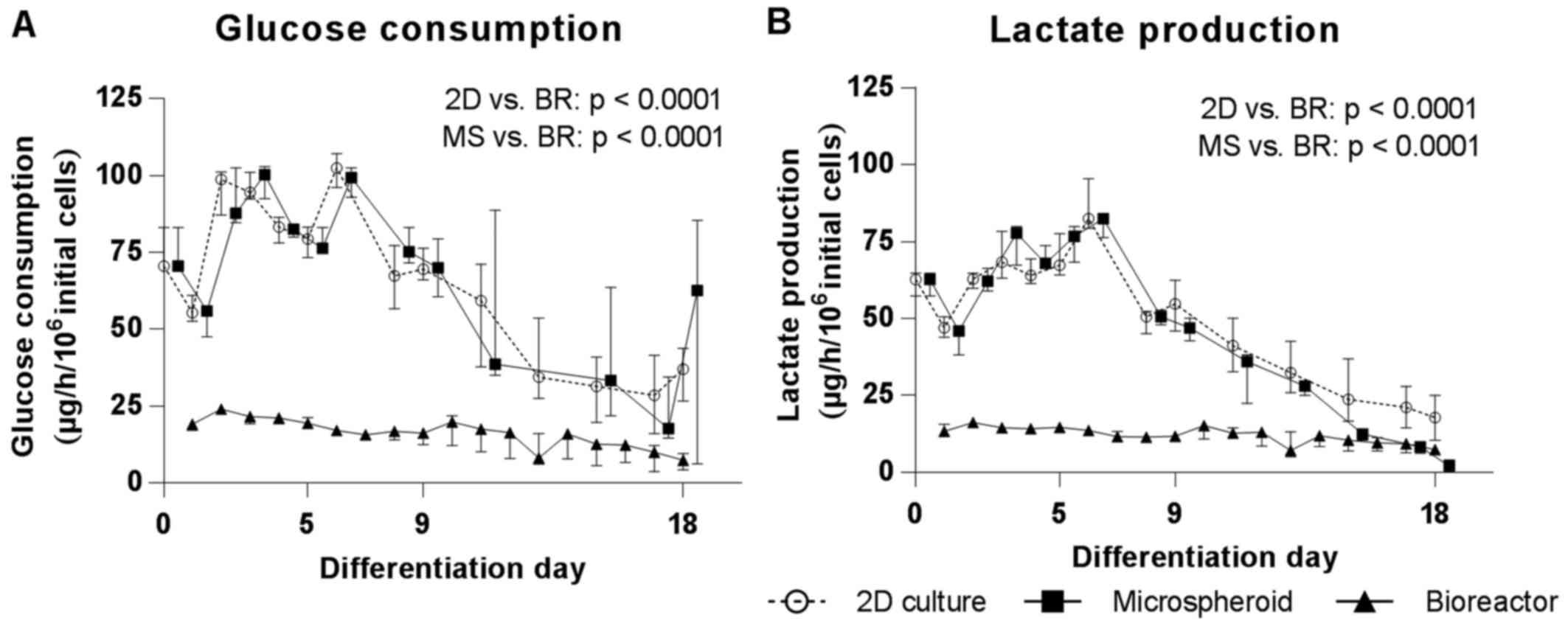 Hepatic differentiation of human iPSCs in different 3D