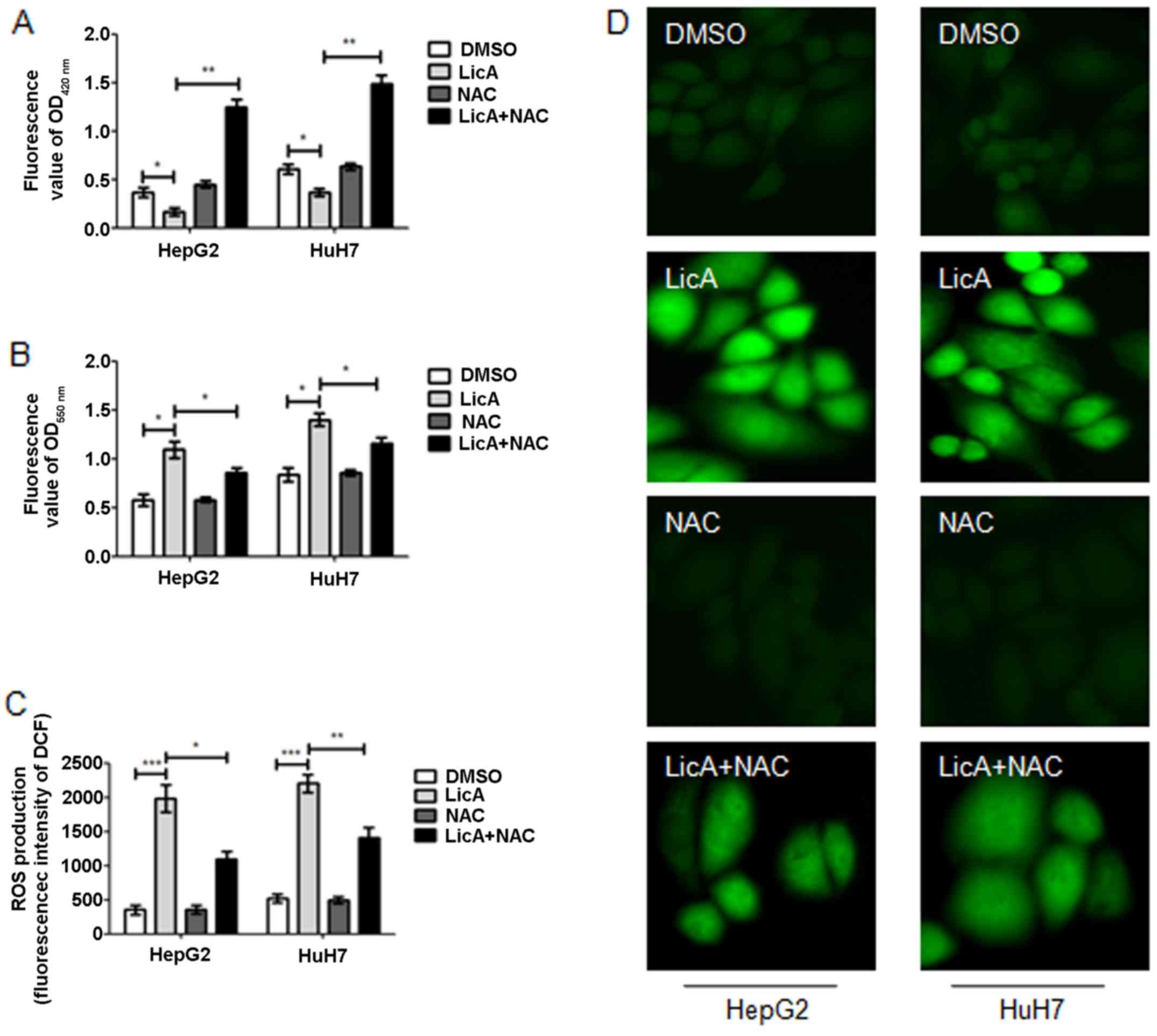LicA induces autophagy through ULK1/Atg13 and ROS pathway in human