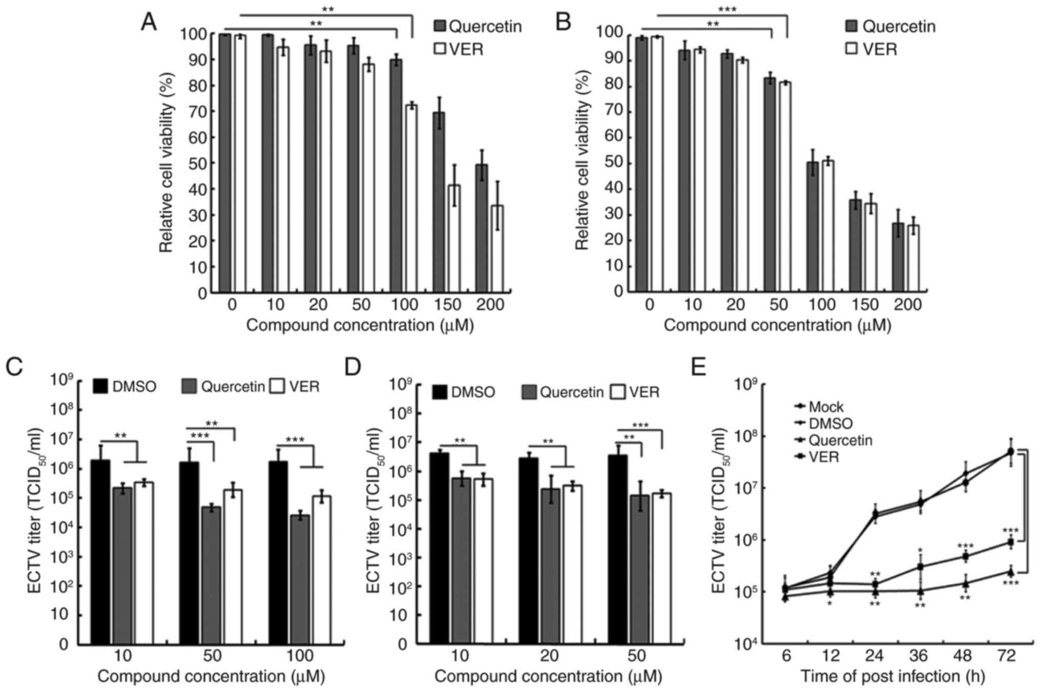 Ectromelia virus upregulates the expression of heat shock protein 70