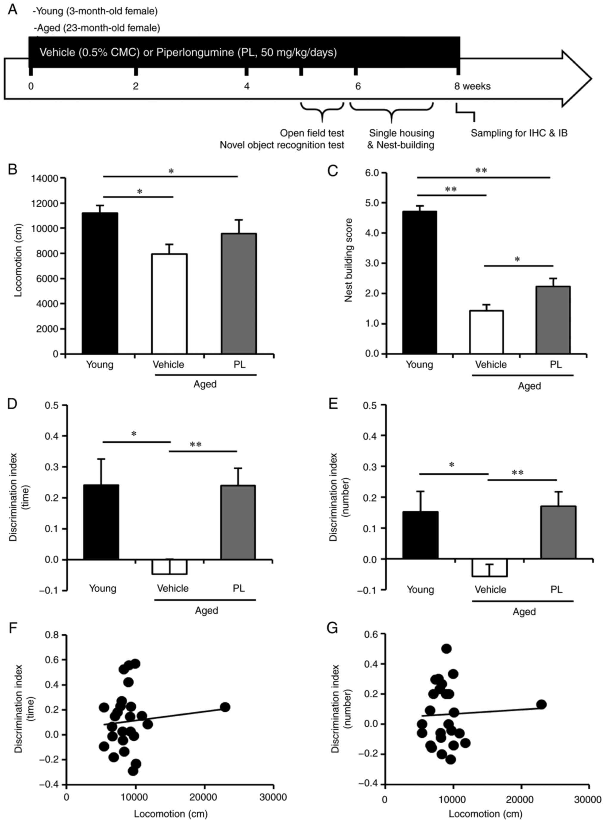 db452b4fdbc (B) Total locomotor activity for a 30-min period in young control mice and  aged mice following treatment with the vehicle or PL (young control; n=7,  ...