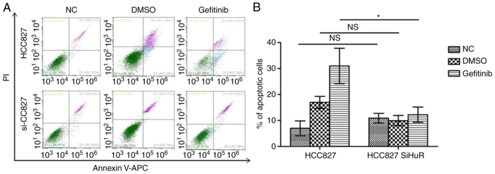 Decreased human antigen R expression confers resistance to tyrosine