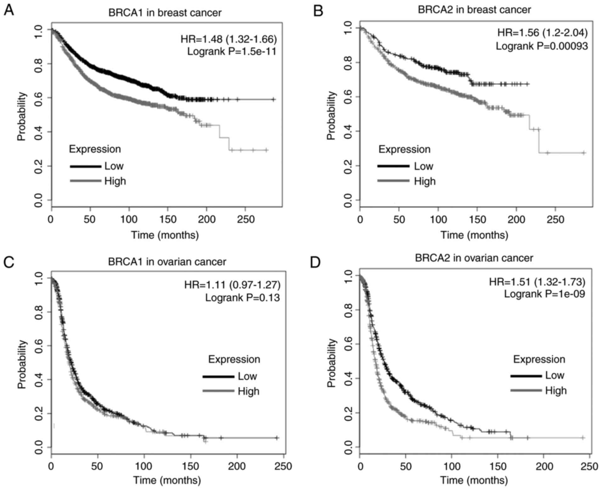 Expression And Mutations Of Brca In Breast Cancer And Ovarian Cancer Evidence From Bioinformatics Analyses