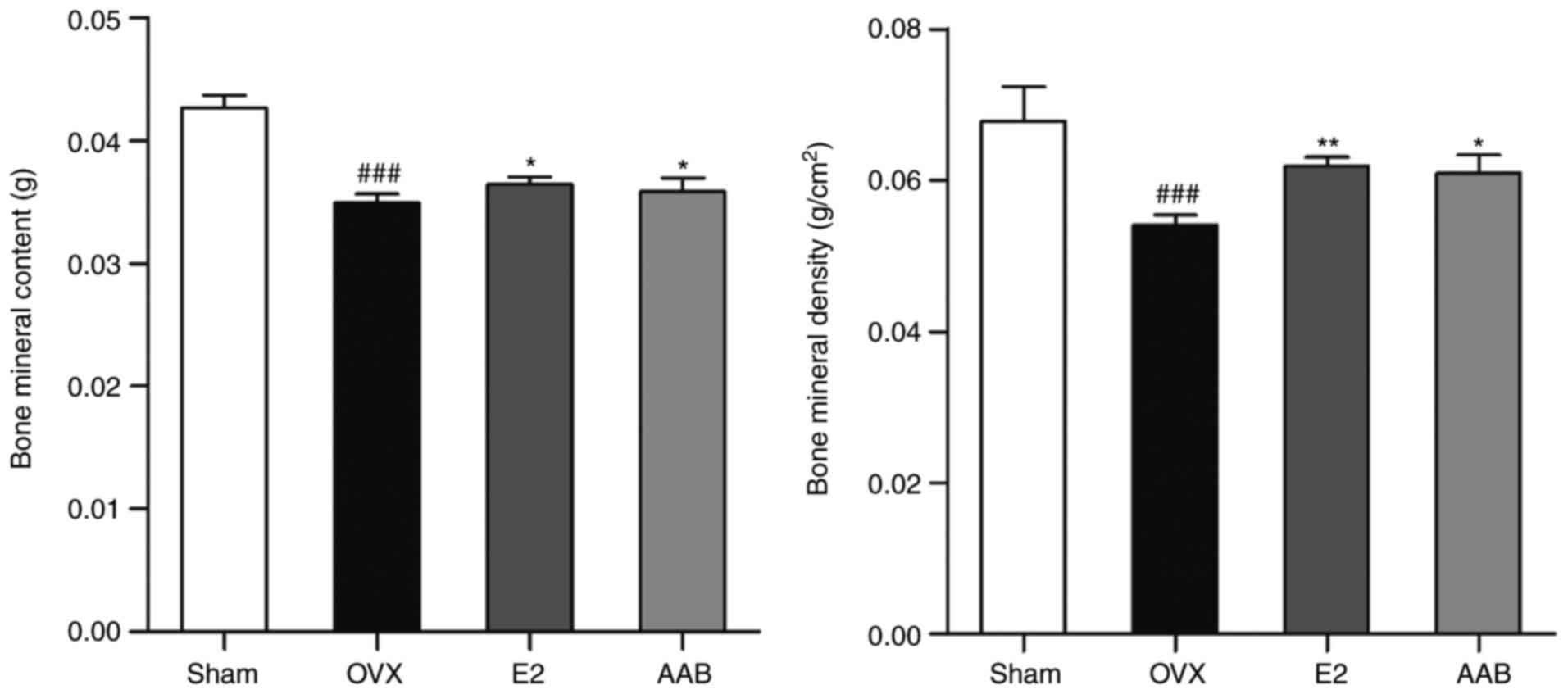 Anemarrhena asphodeloides Bunge ameliorates osteoporosis by