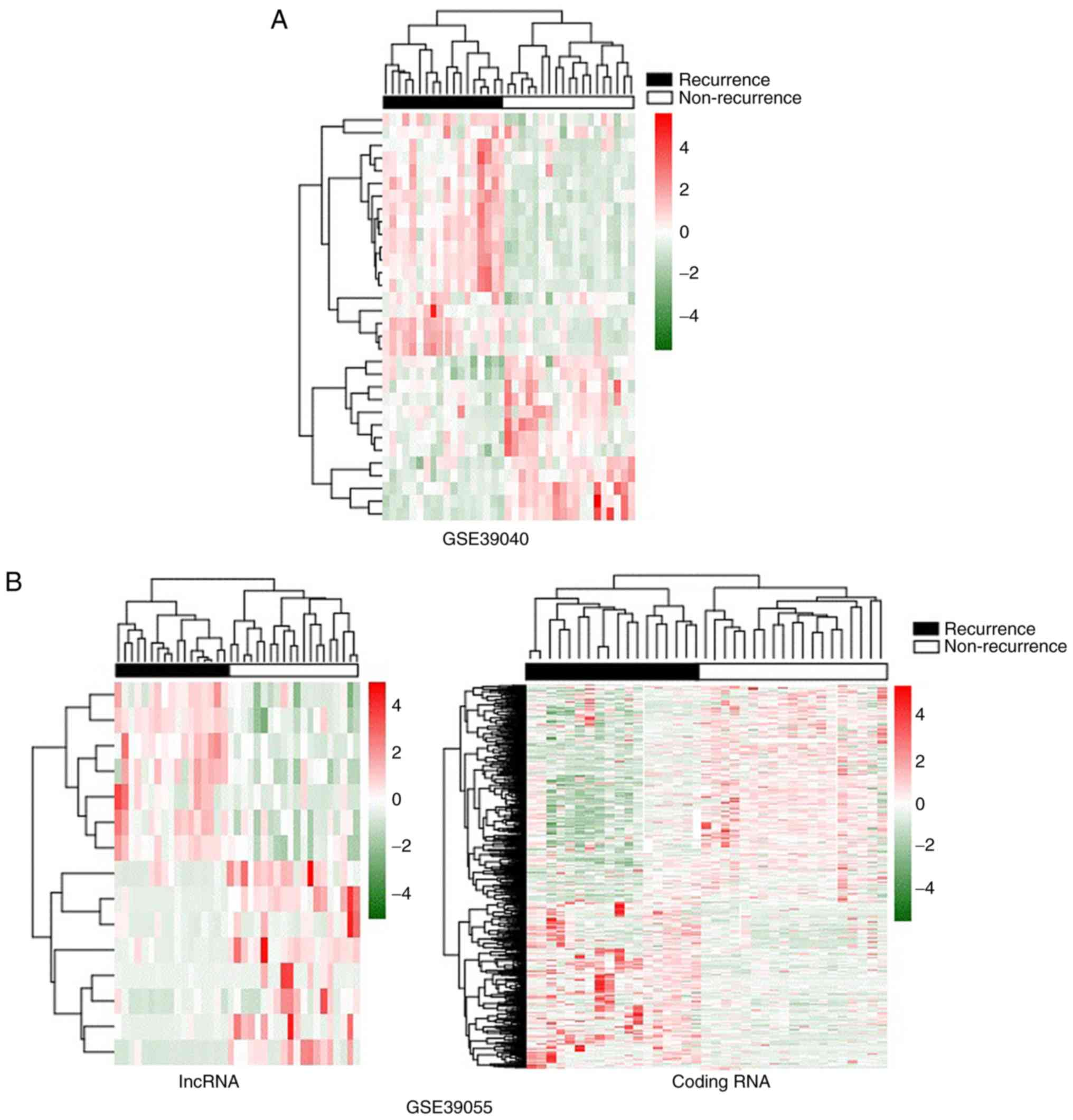 Identification of biomarkers associated with the recurrence of