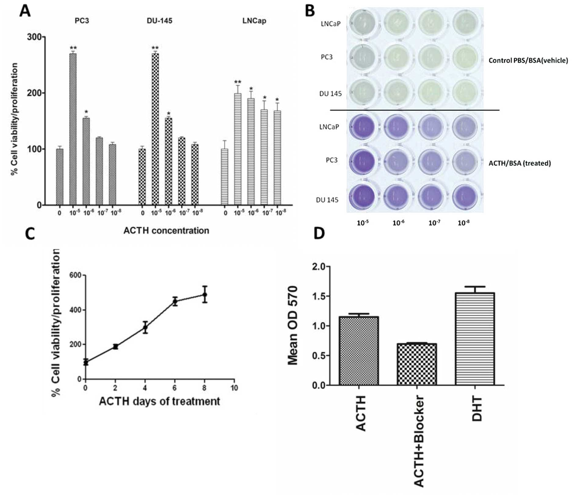 Expression Of Melanocortin Receptors In Human Prostate