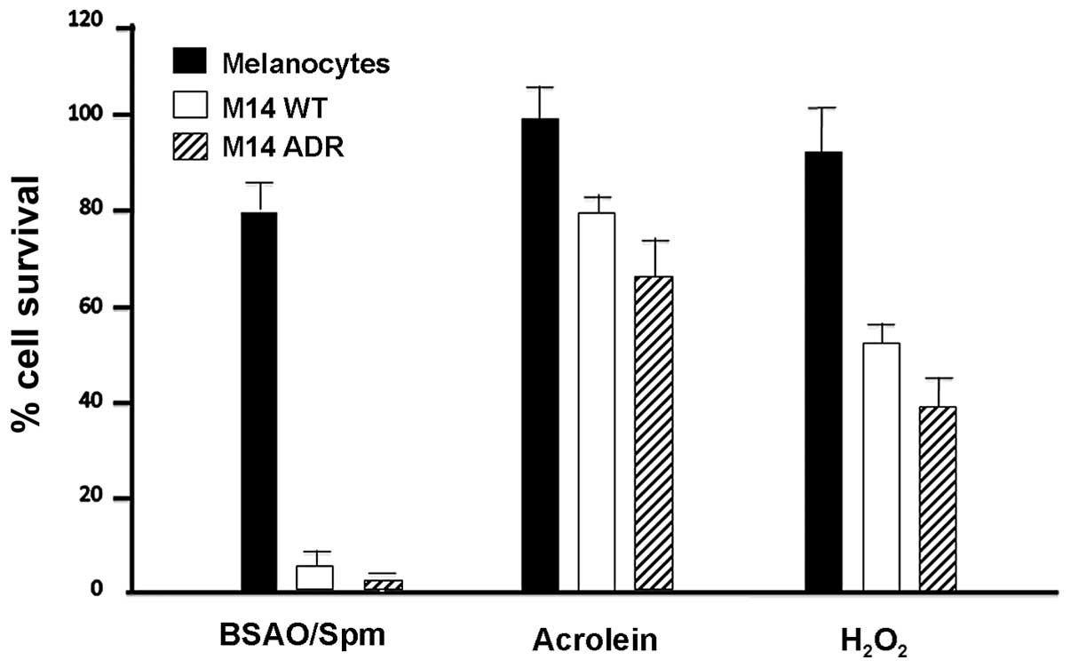 The Combined Treatment With Chloroquine And Enzymatic Oxidation Buy Wholesale Short Circuit Detector From China Figure 7 Effect Of Bsao Spermine Exogenous Hydrogen Peroxide Acrolein On M14 Melanoma Melanocyte Cell Viability Wt Adr2 Cells