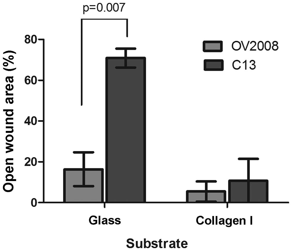 Motility Of Select Ovarian Cancer Cell Lines Effect Of Extracellular Matrix Proteins And The Involvement Of Pak2