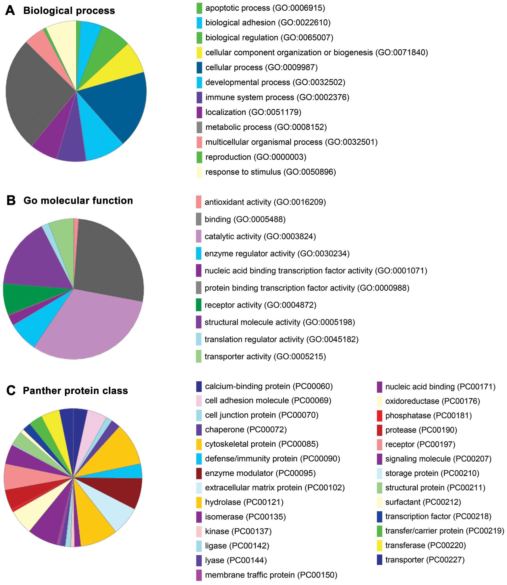 ITRAQ-based Quantitative Proteomic Analysis Of Cervical Cancer