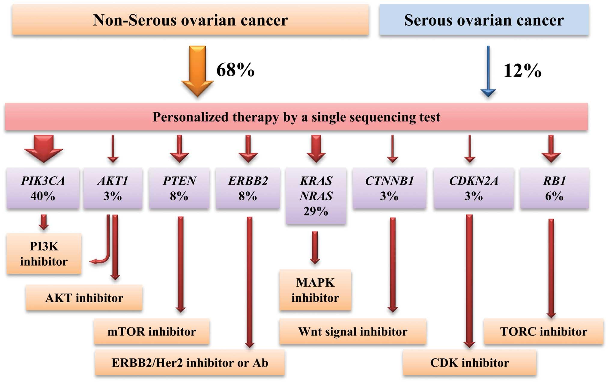 ovarian cancer gene
