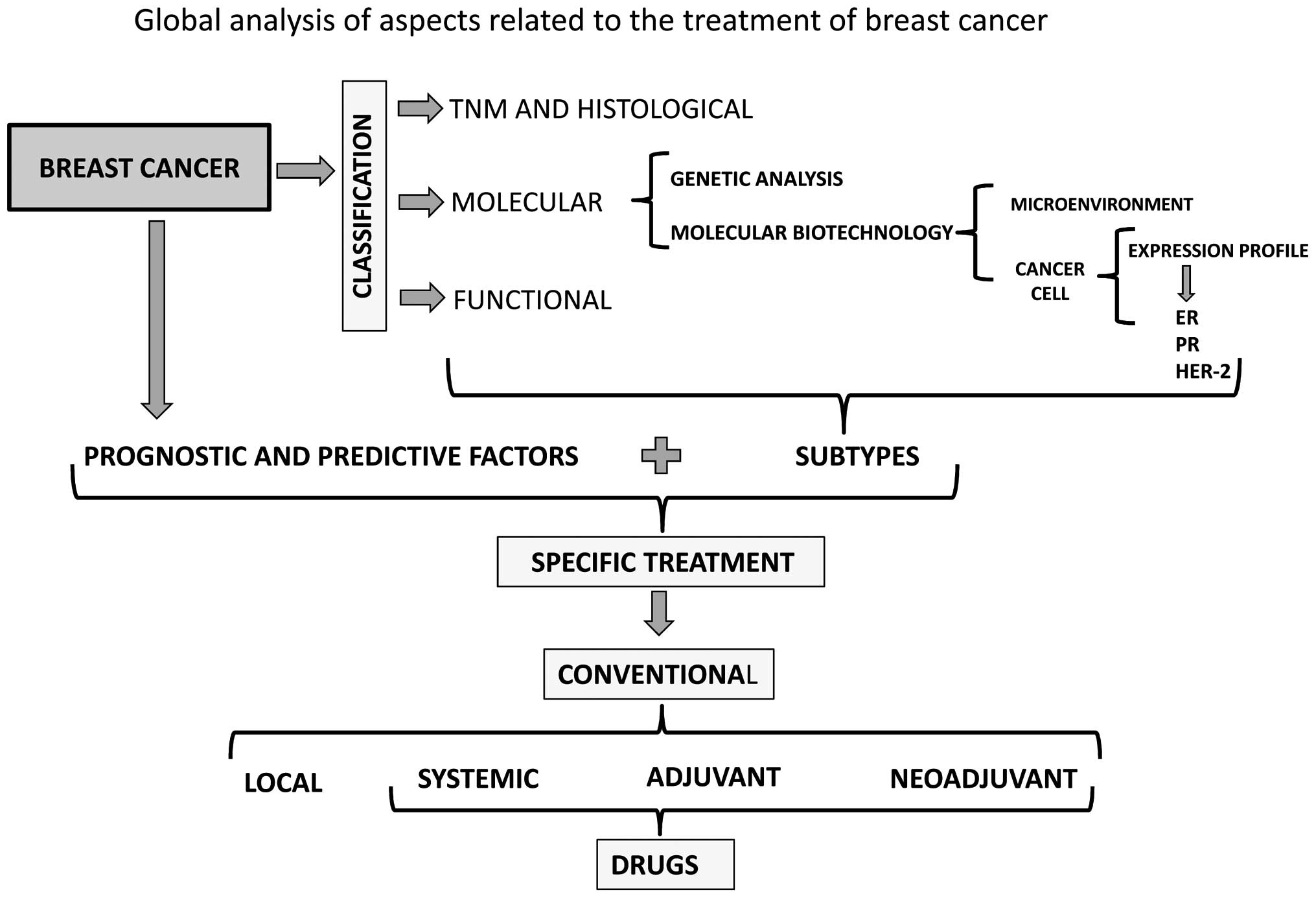 An analysis of the stages treatments and prognosis of breast cancer