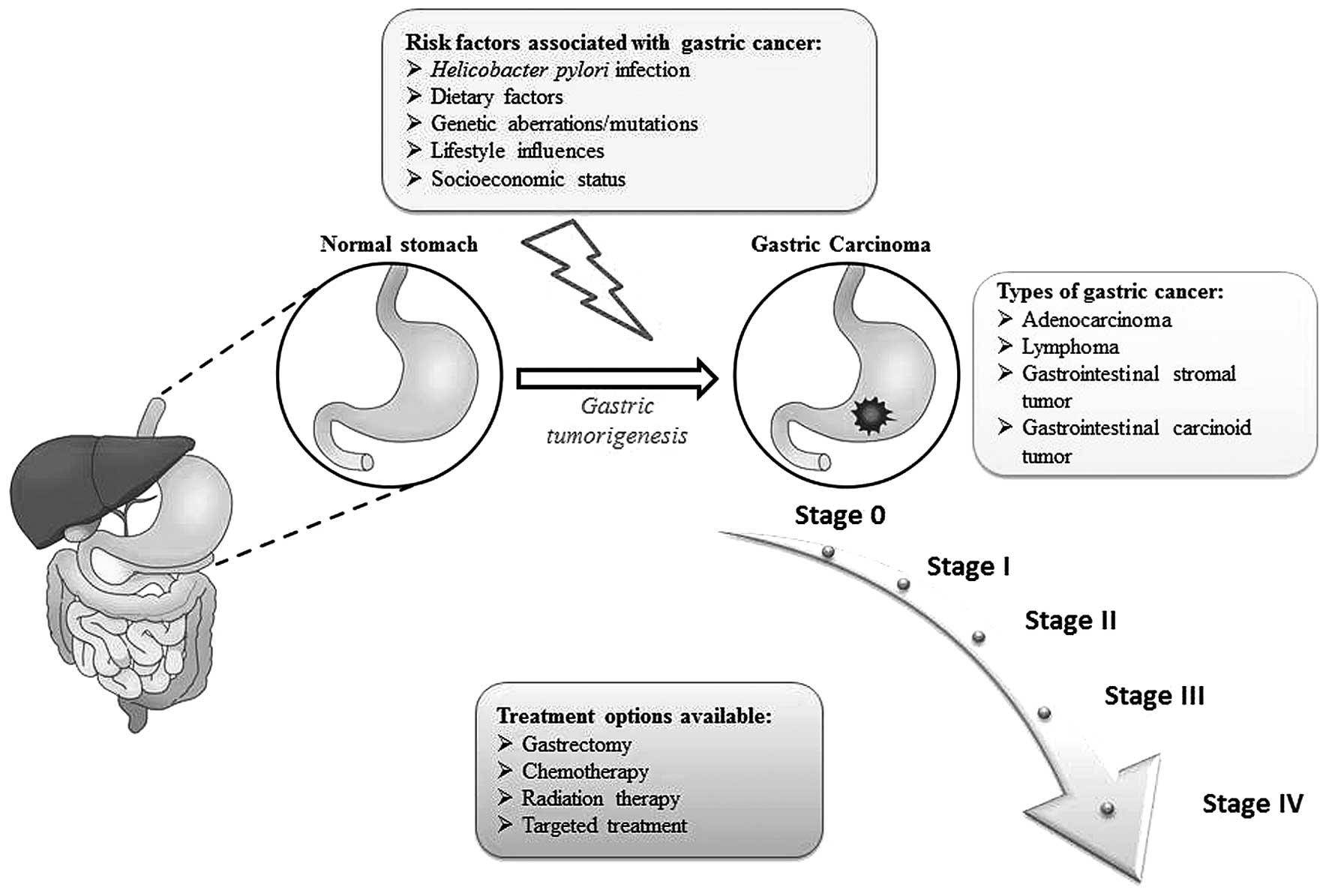 anemie lepore cele mai eficiente medicamente parazite din organism
