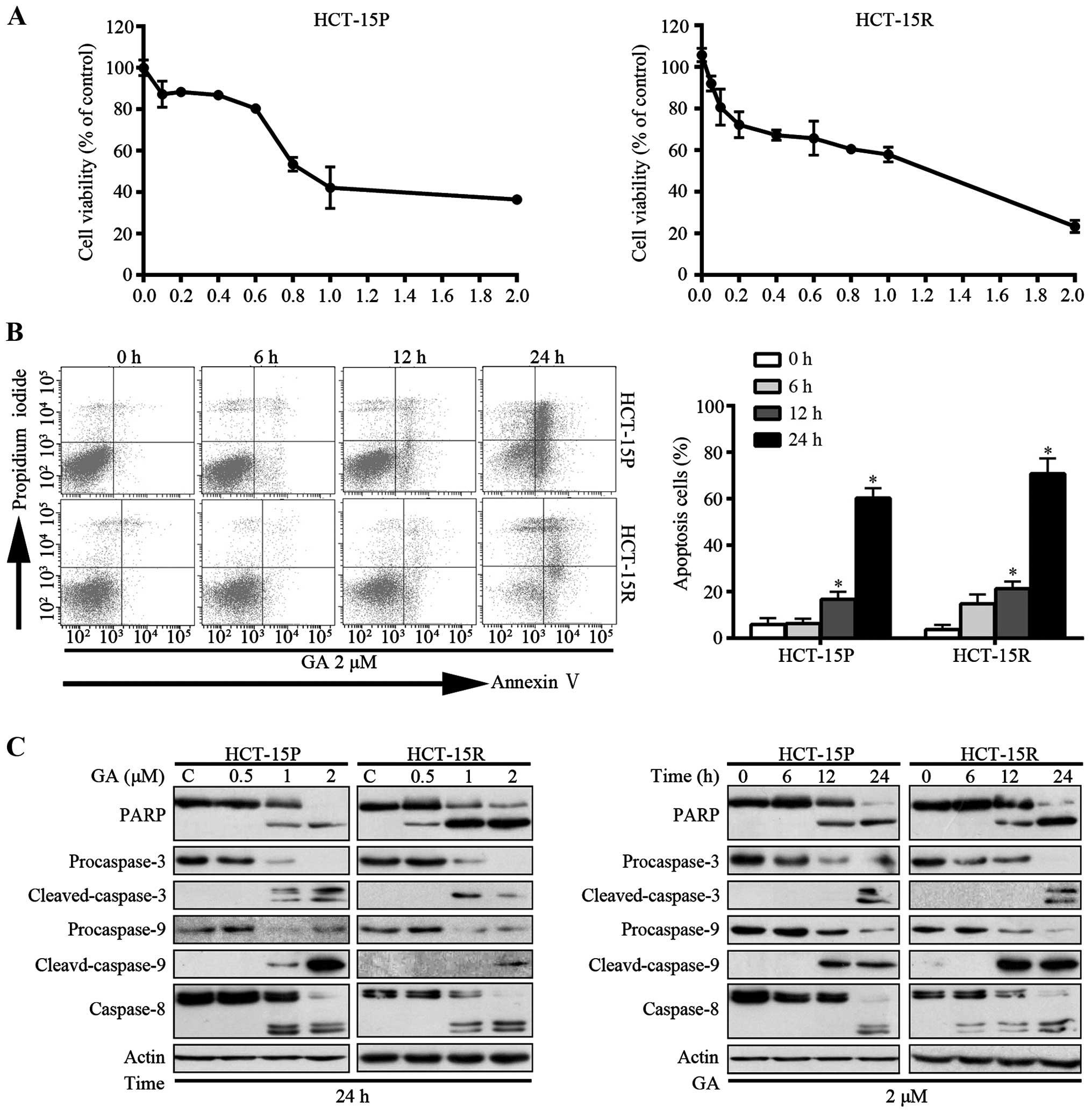 (PDF) Gambogic acid inhibits growth, induces apoptosis