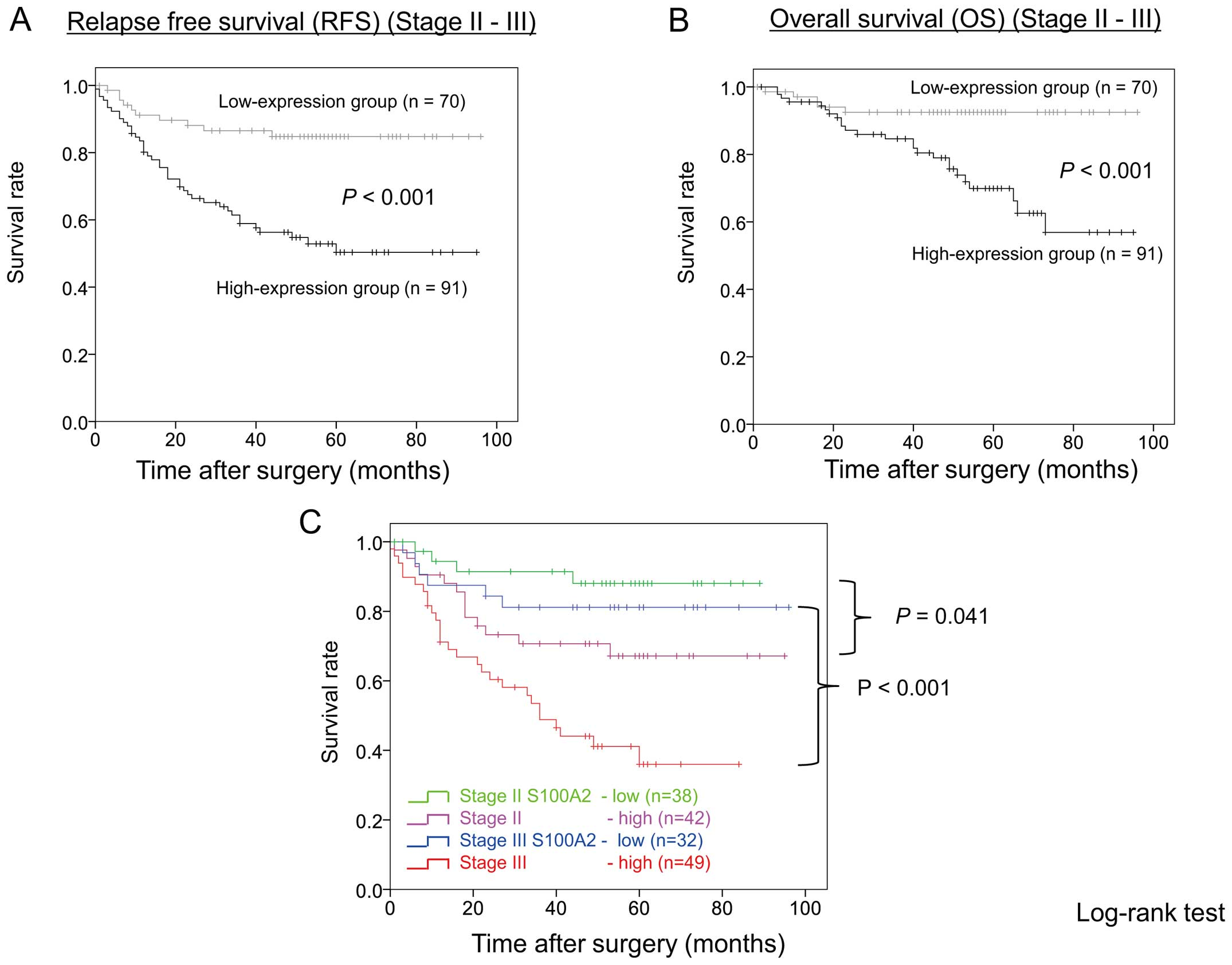 Overexpression Of The S100a2 Protein As A Prognostic Marker For Patients With Stage Ii And Iii Colorectal Cancer