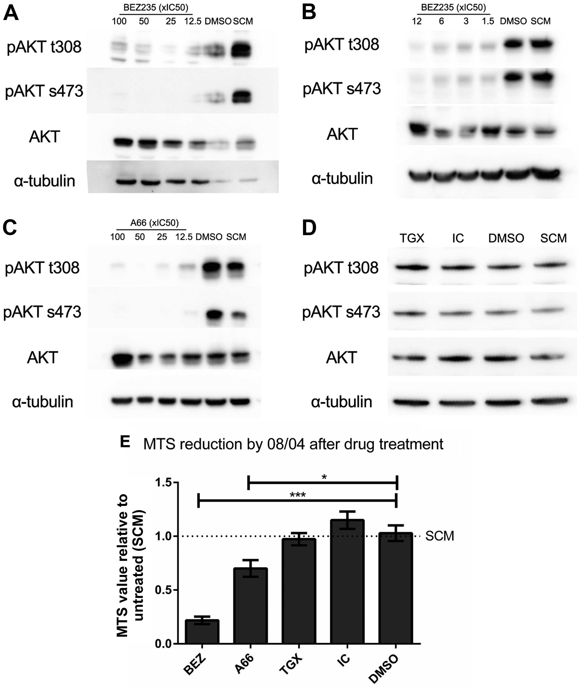 Targeted inhibition of dominant PI3-kinase catalytic isoforms