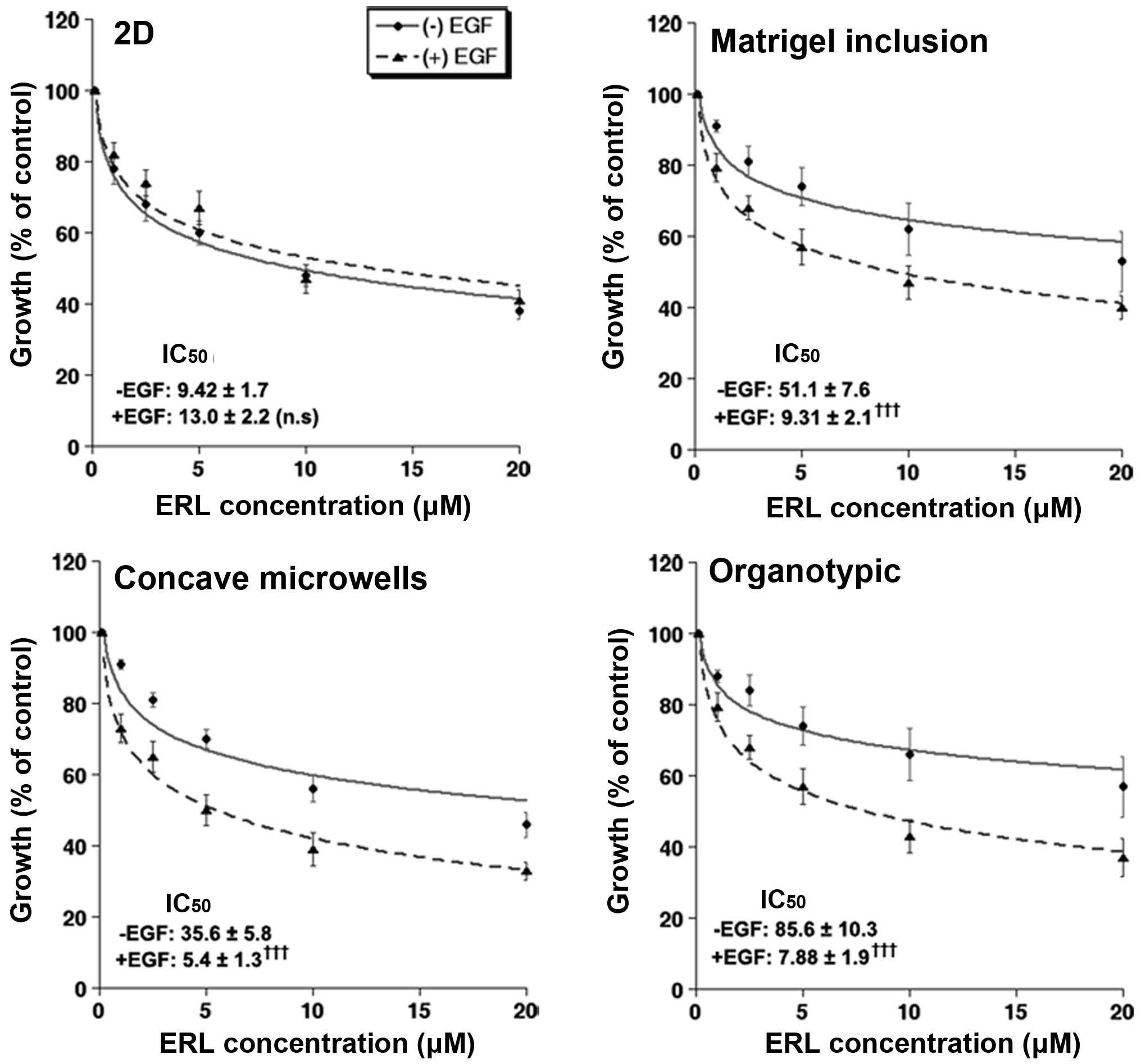 Assessment of different 3D culture systems to study tumor phenotype ...