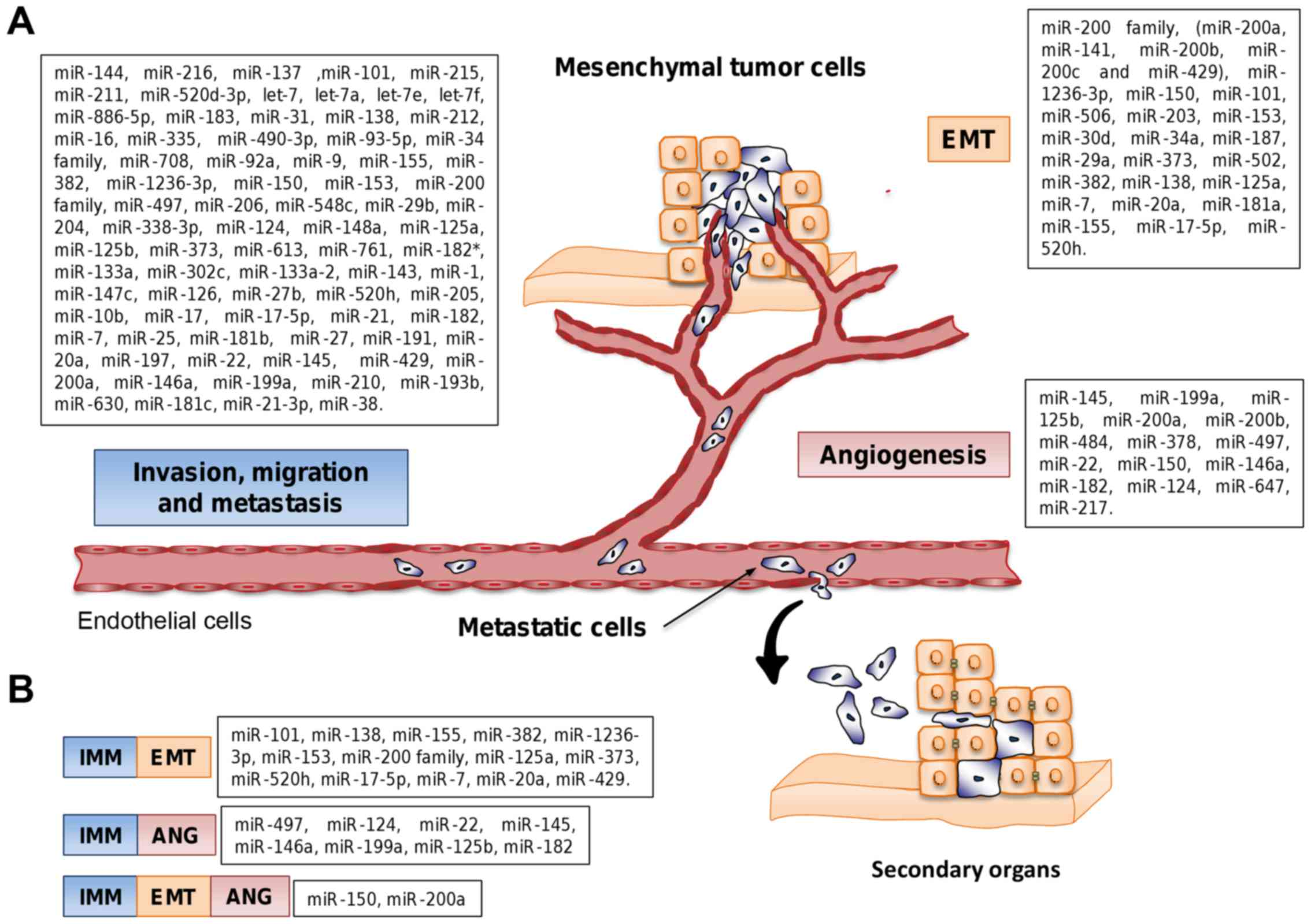 MicroRNAs driving invasion and metastasis in ovarian cancer