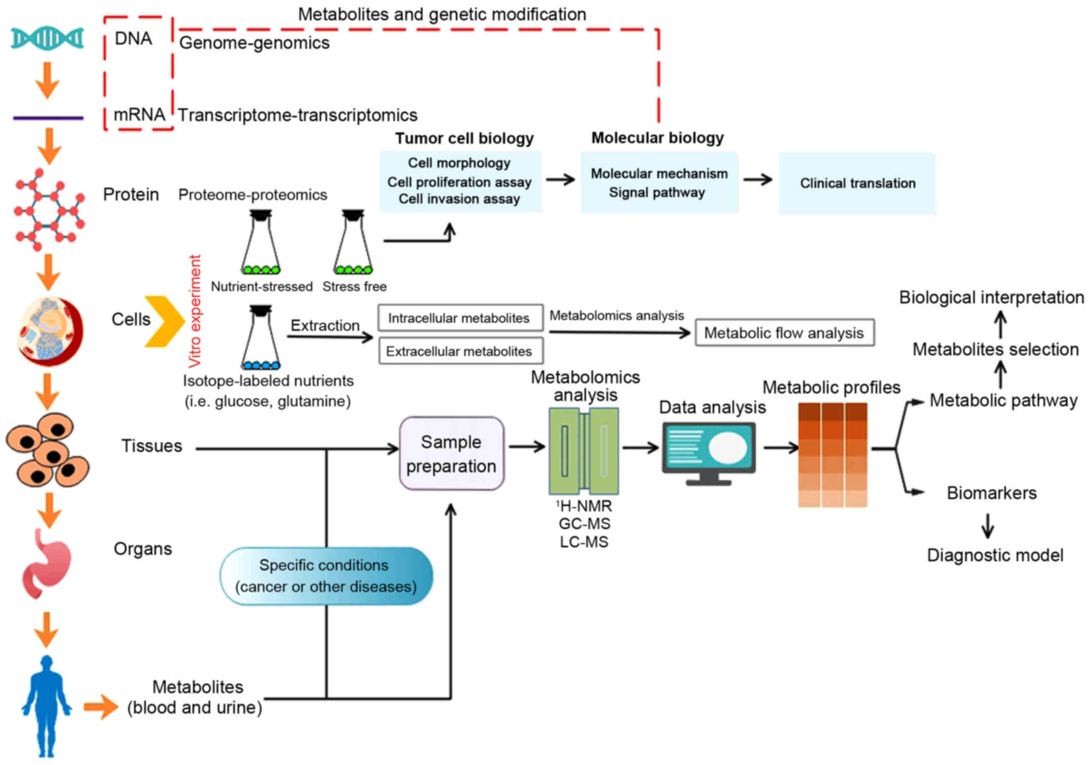 Gastric cancer biomarkers a systems biology approach - Scientific Publications